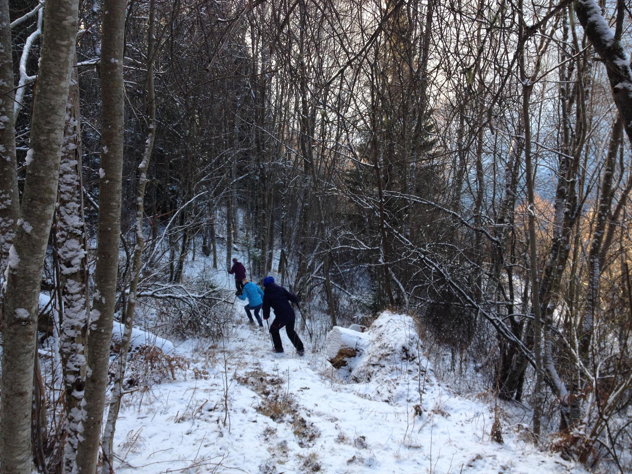 """die Nordic Walking Damen """"på tur"""""""