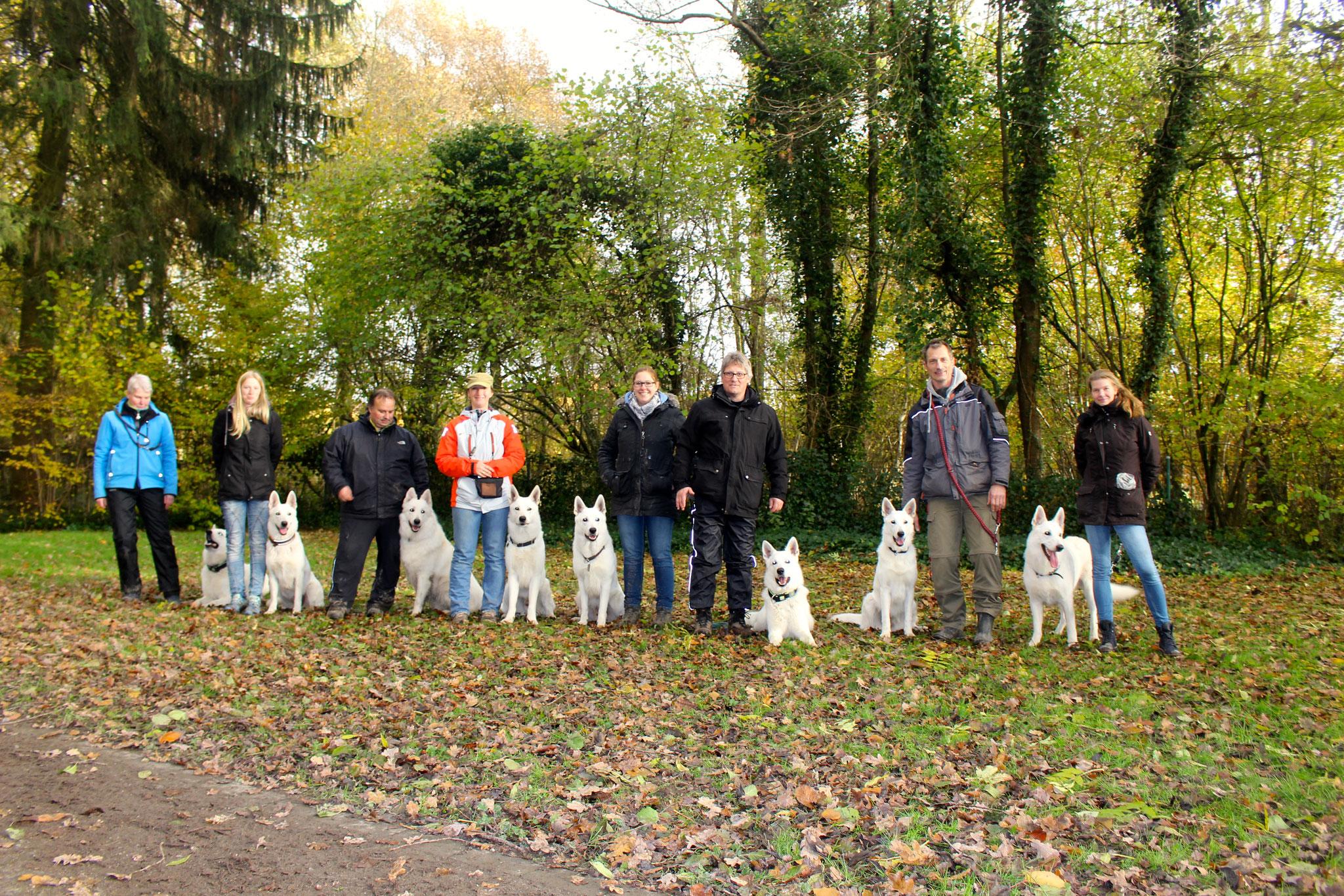 von links nach rechts: Flaco, Akira, Prince, Buddy, Dexter, Nikan, Breeze, Milow (Aiyana war leider nicht mehr da)