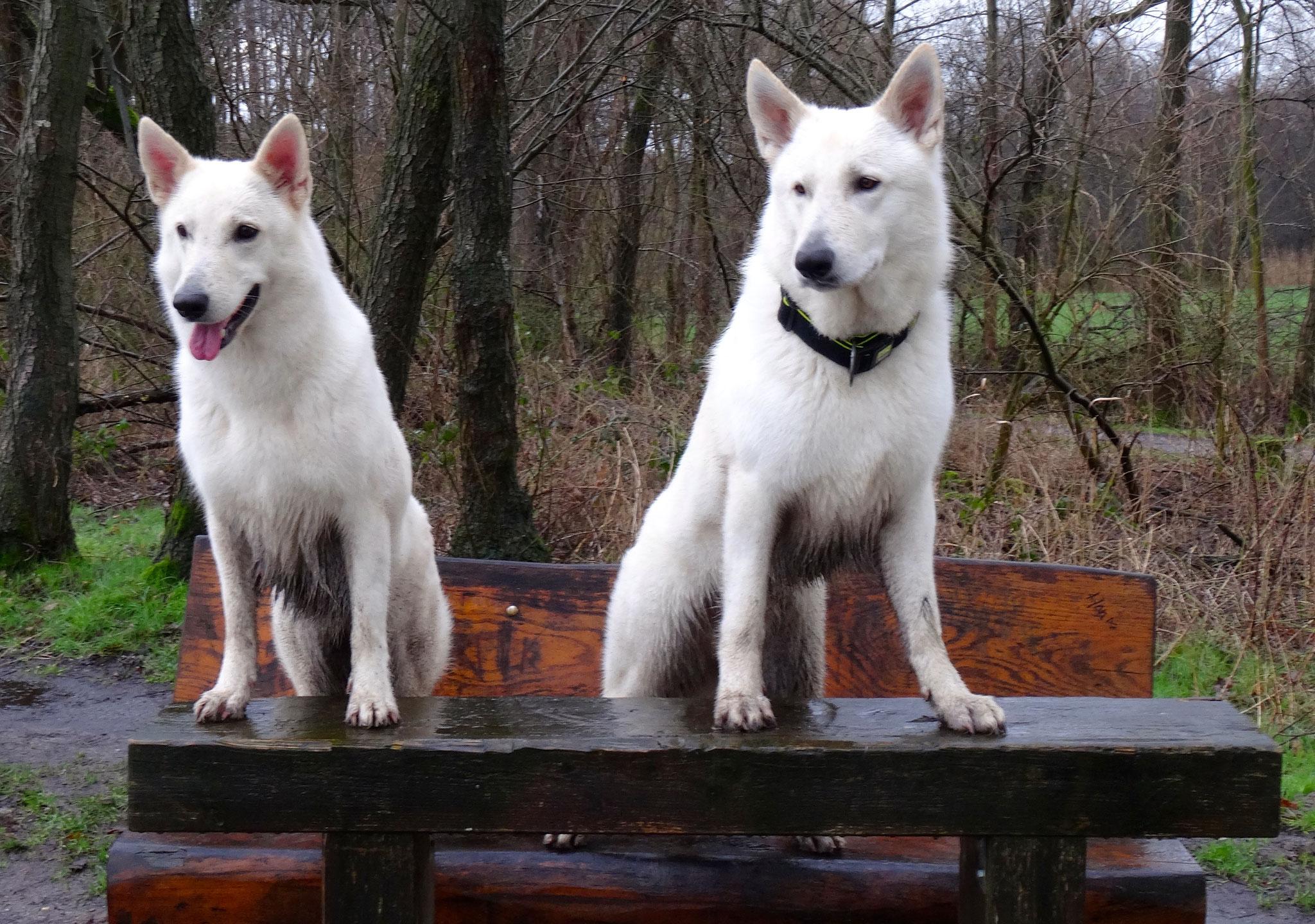 Milka & Flaco