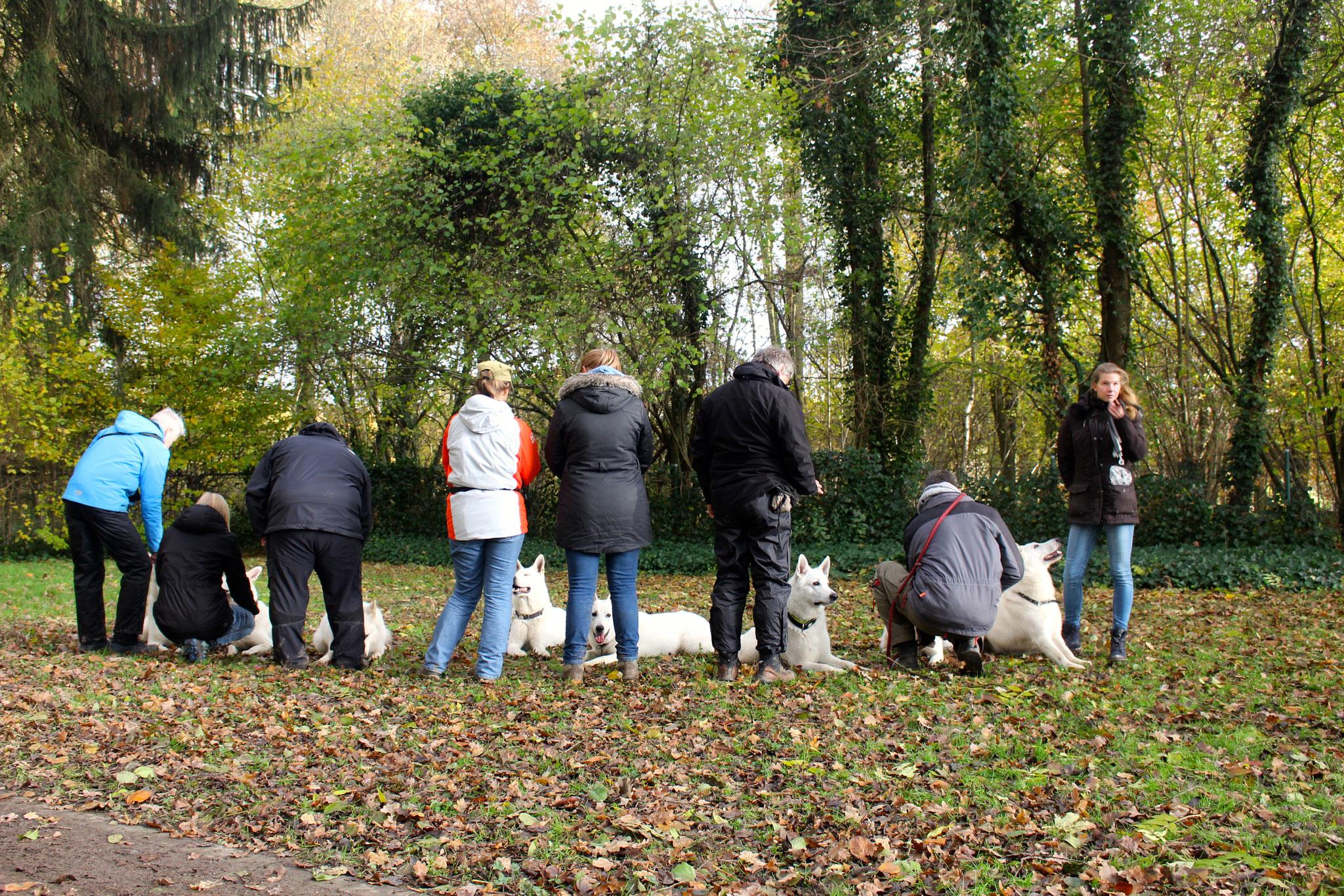 Vorbereitung für das Gruppenfoto