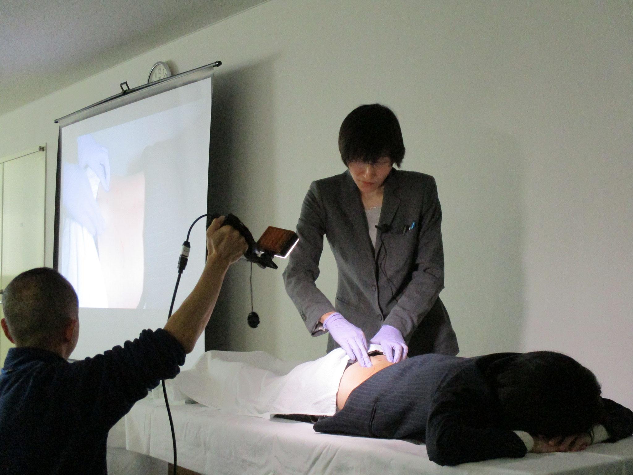現代鍼灸実技