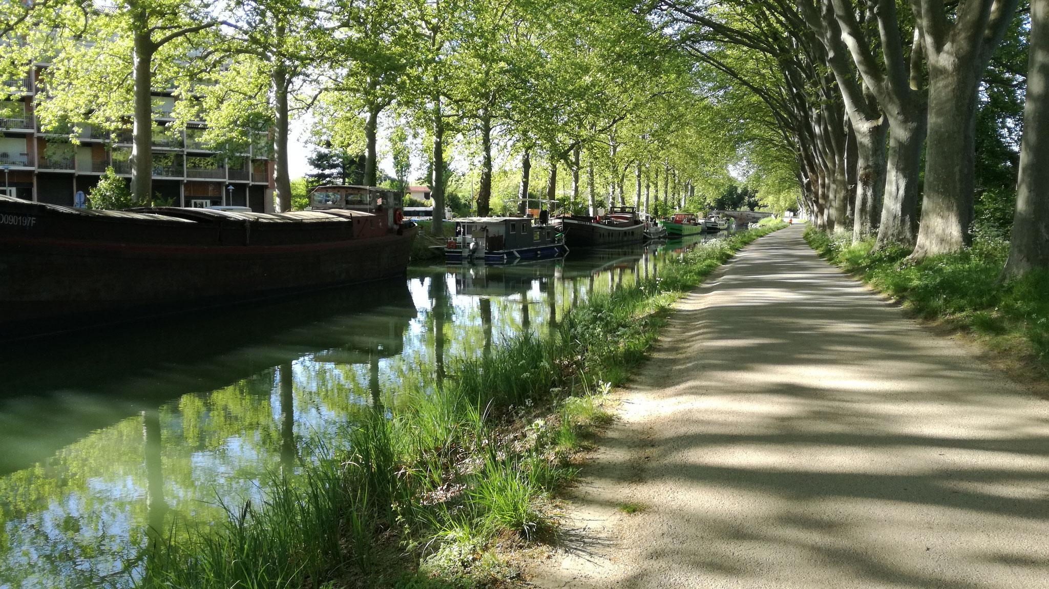Le Canal du midi et ses péniches