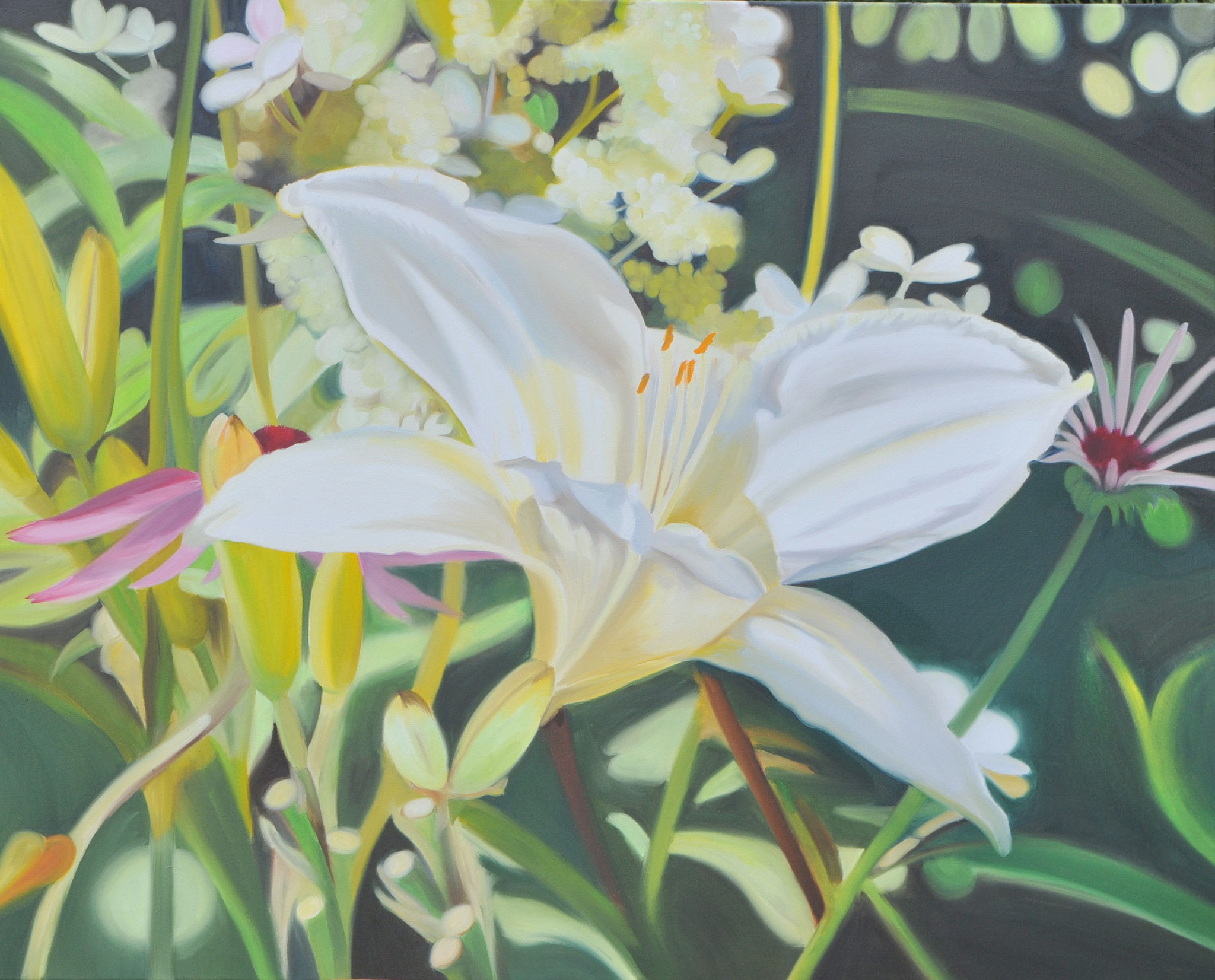 Weiße Lilie, 80 x 100 cm