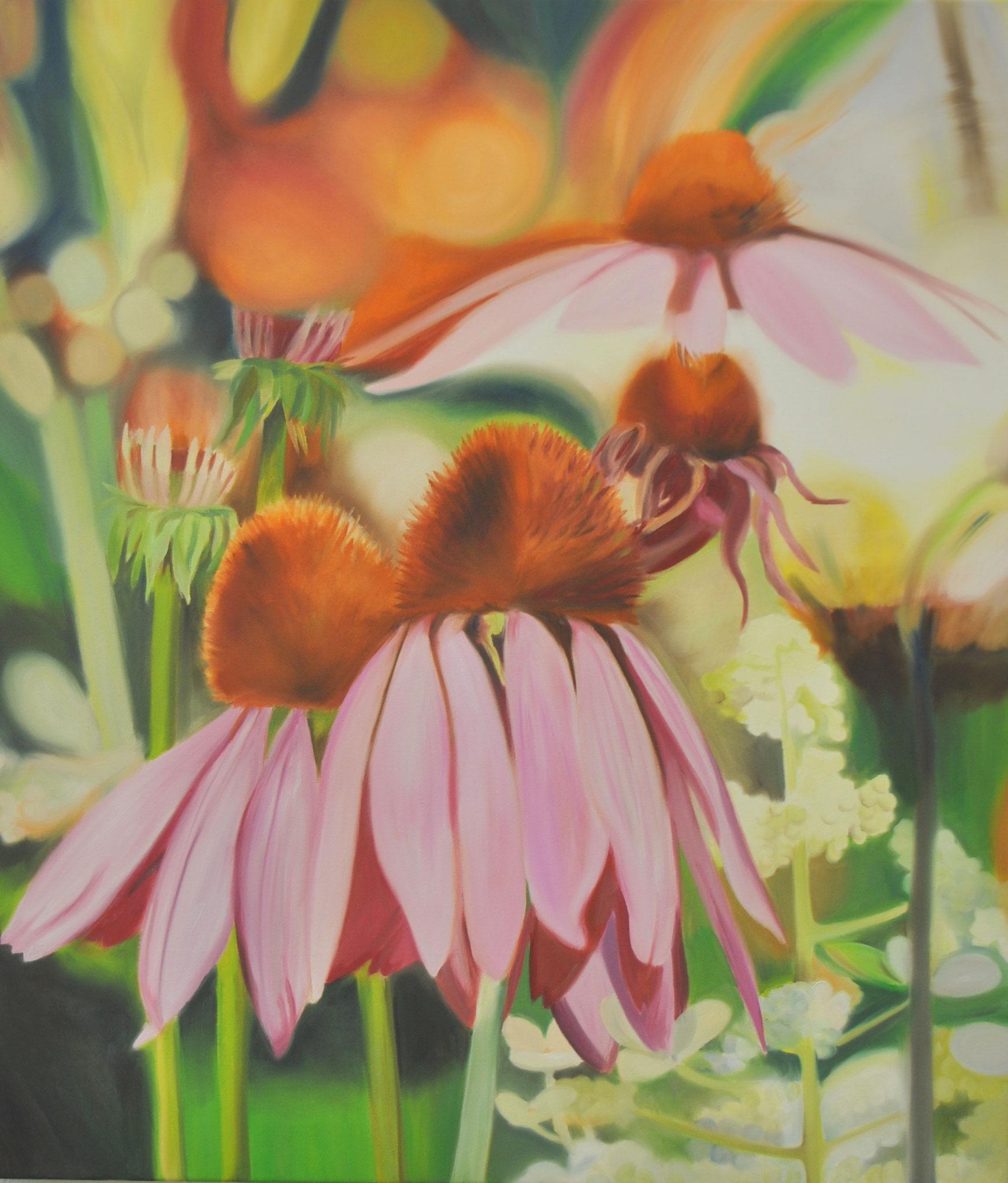 Rosa Sonnenhut, 80 x 70 cm