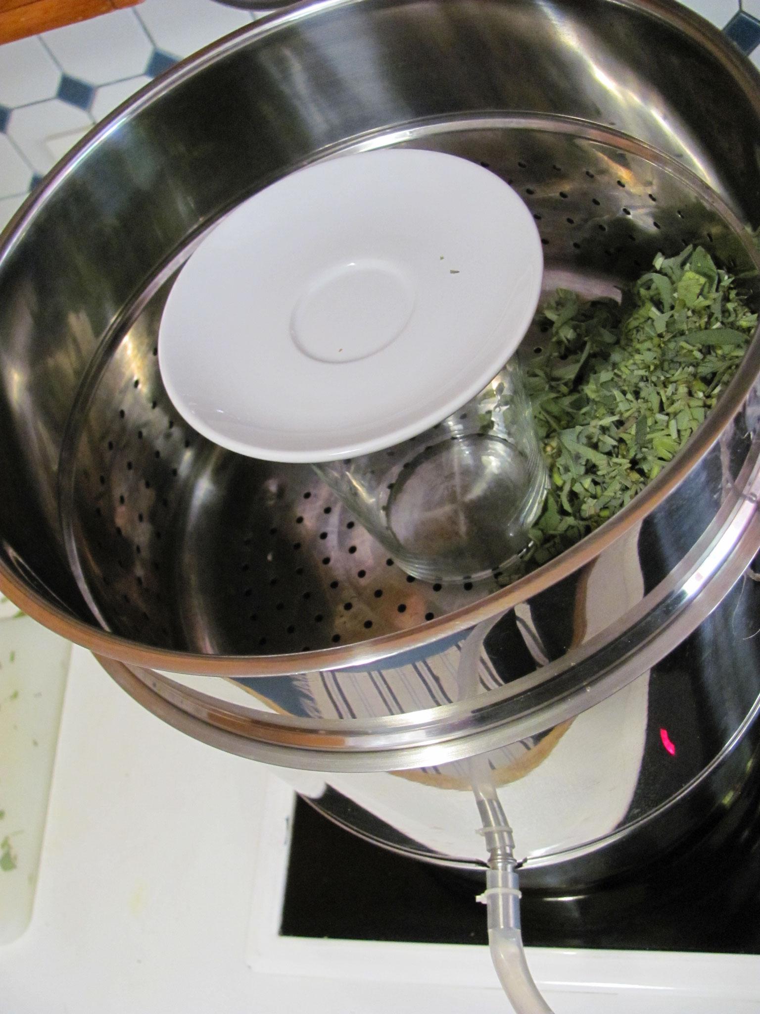 Obst- bzw. Pflanzenbehälter aufsetzen, feuerfestes Glas zum Auffangen des Hydrolates mit Teller abgedeckt einsetzen