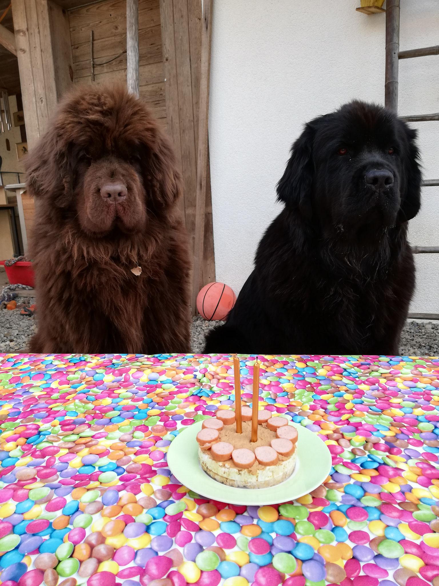 Ivy und Inusch feiern Geburtstag