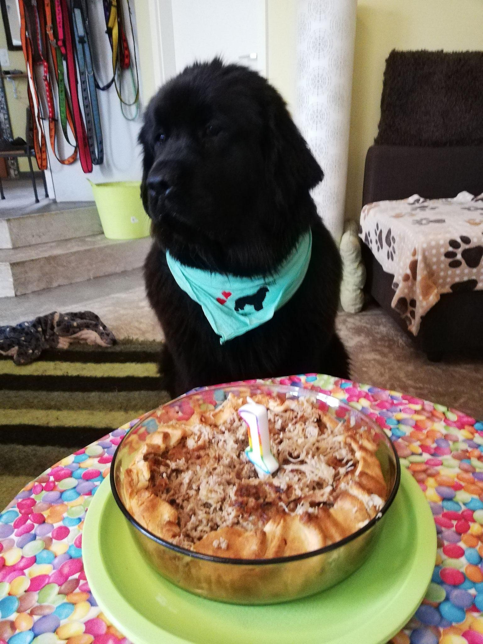 Ivy Feiert ihren ersten Geburtstag