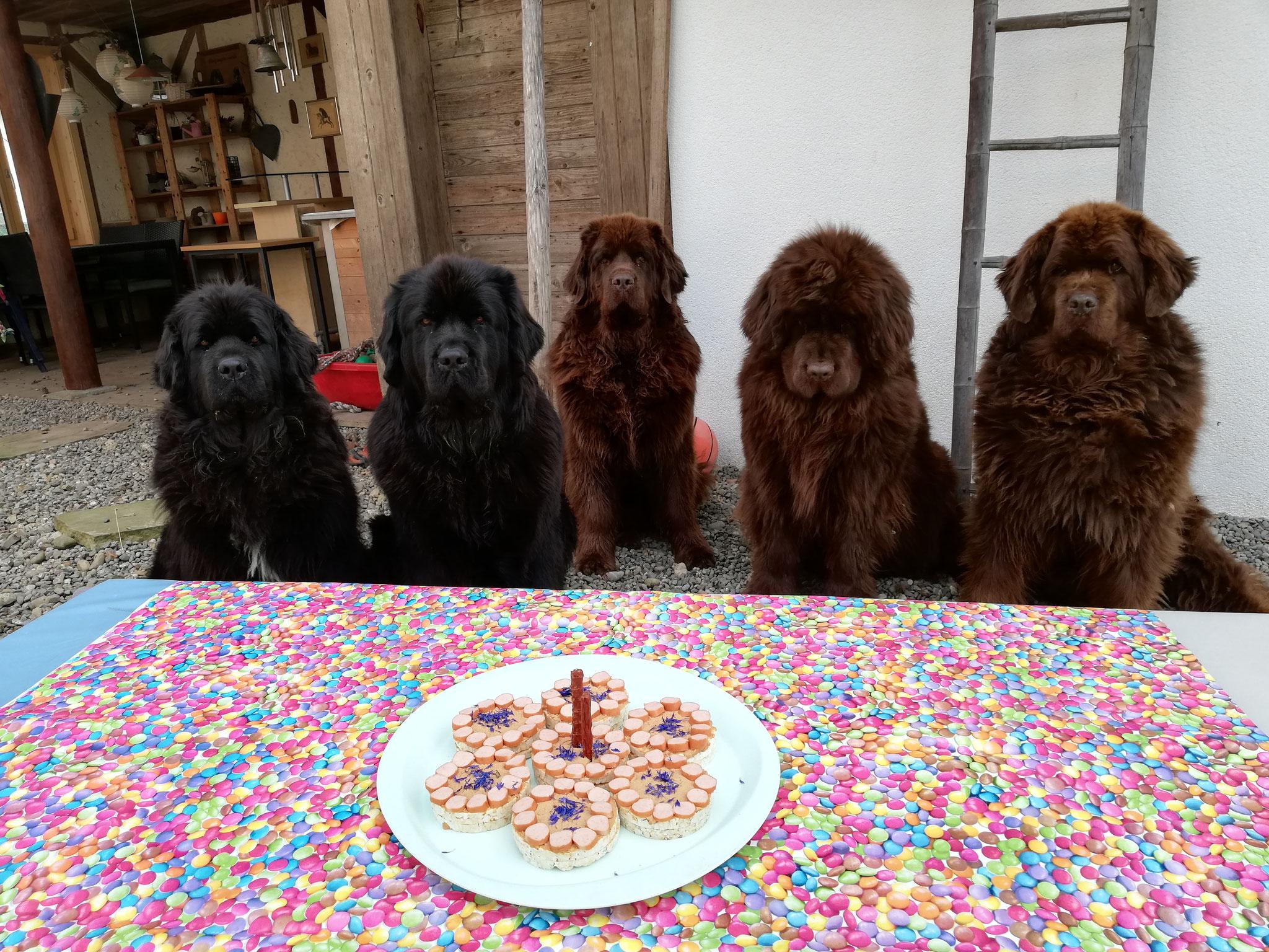 Die Geburtstagsparty kann starten