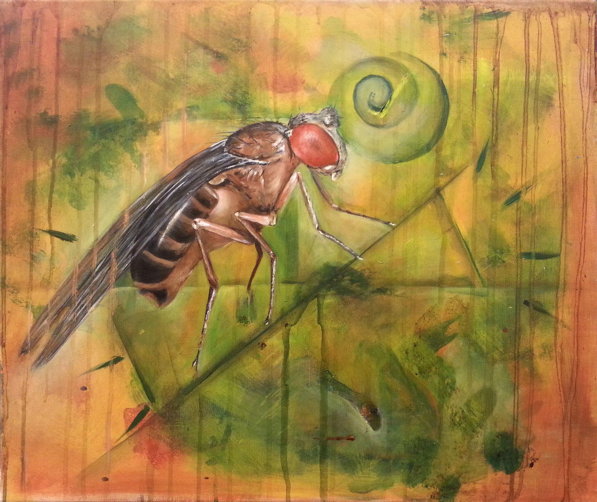 "biosphere ""science 1"" 80 x100cm, 2016"