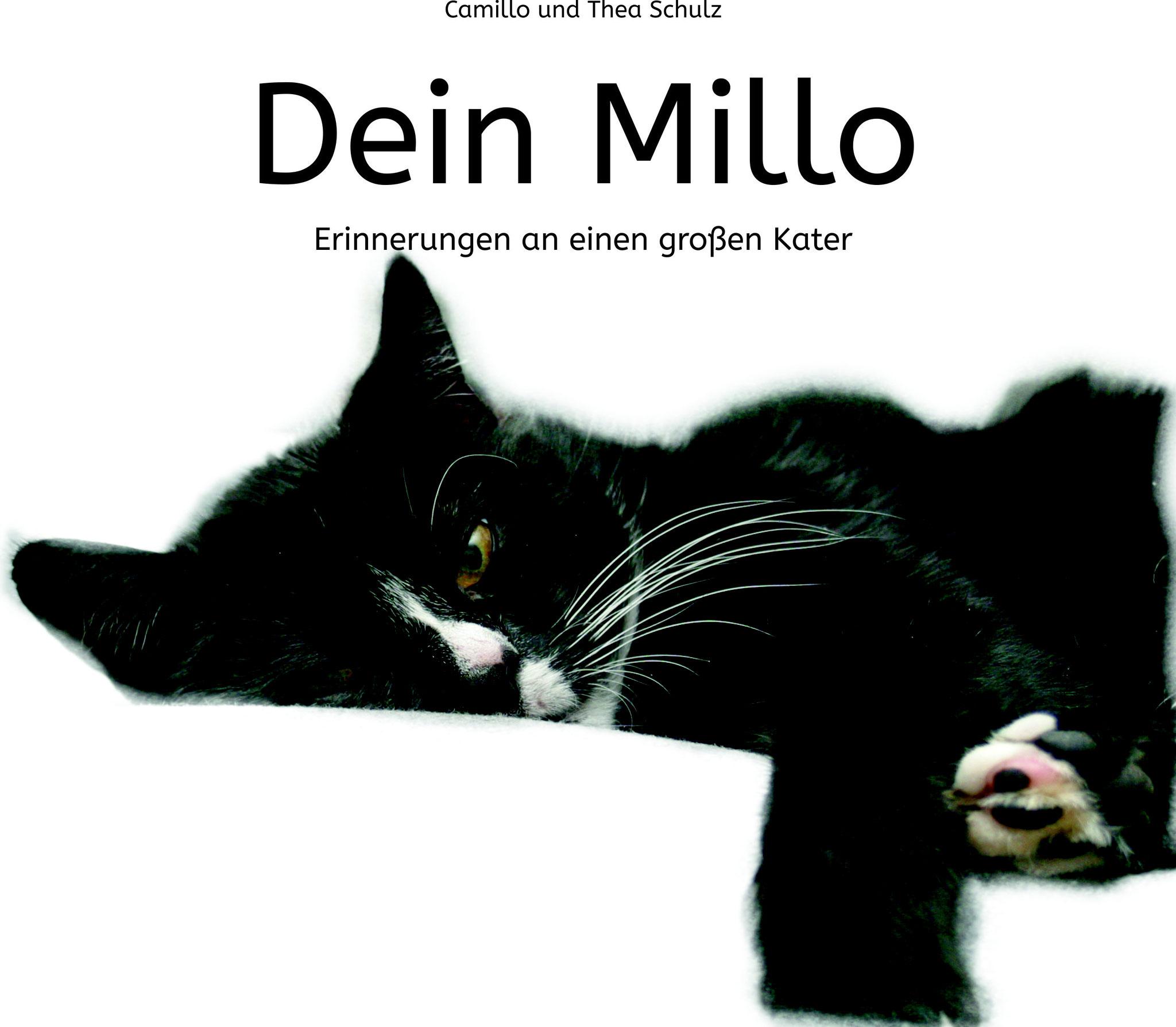 Dein Millo - Erinnerungen an einen großen Kater