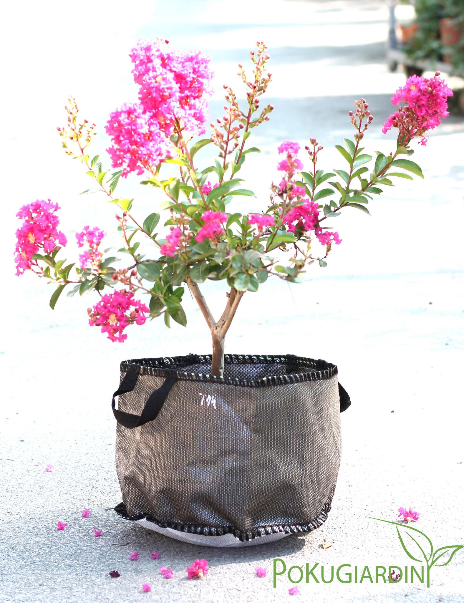 Baggy Planter