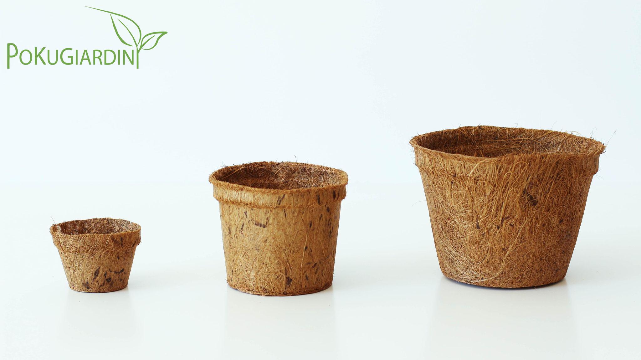Vasi di cocco