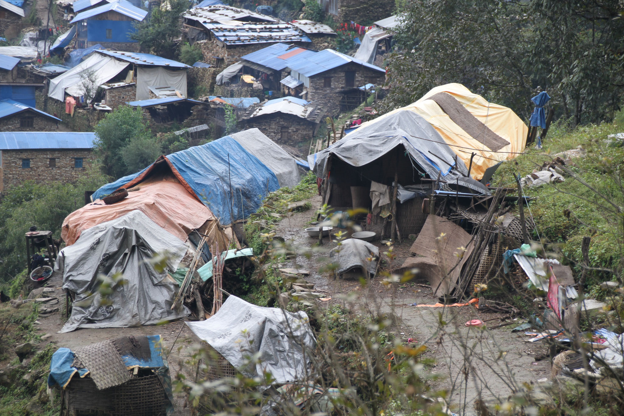 lot of the inhabitants of Singla have not yet a new house