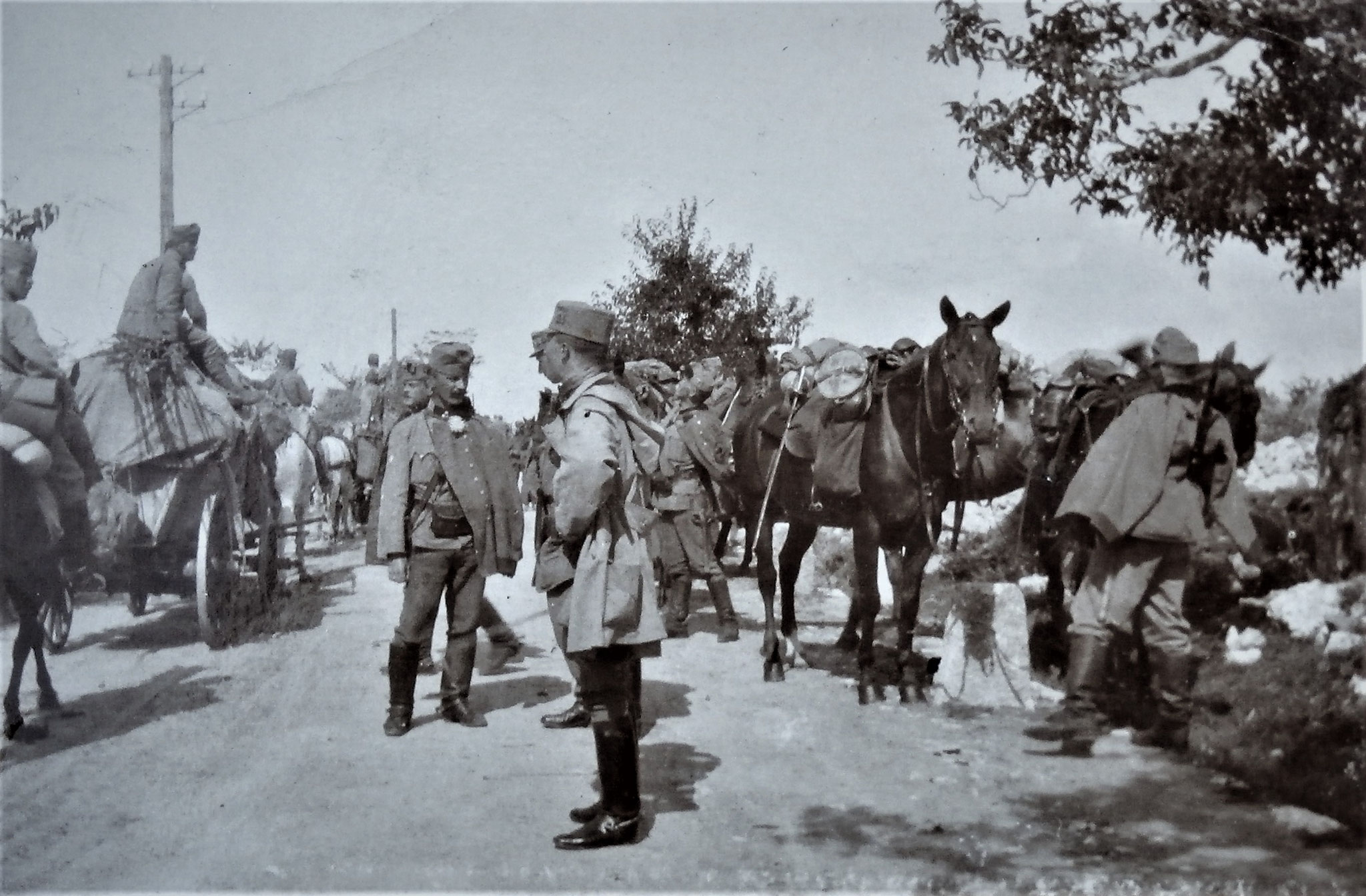 Opcina-Nabresina: Train des Regimentes u. Tete der 3. Esk. Ich (nur Kopf), Zgfr Franz Tommasini (1. Zug), Nedwed nur Profil, Zenone