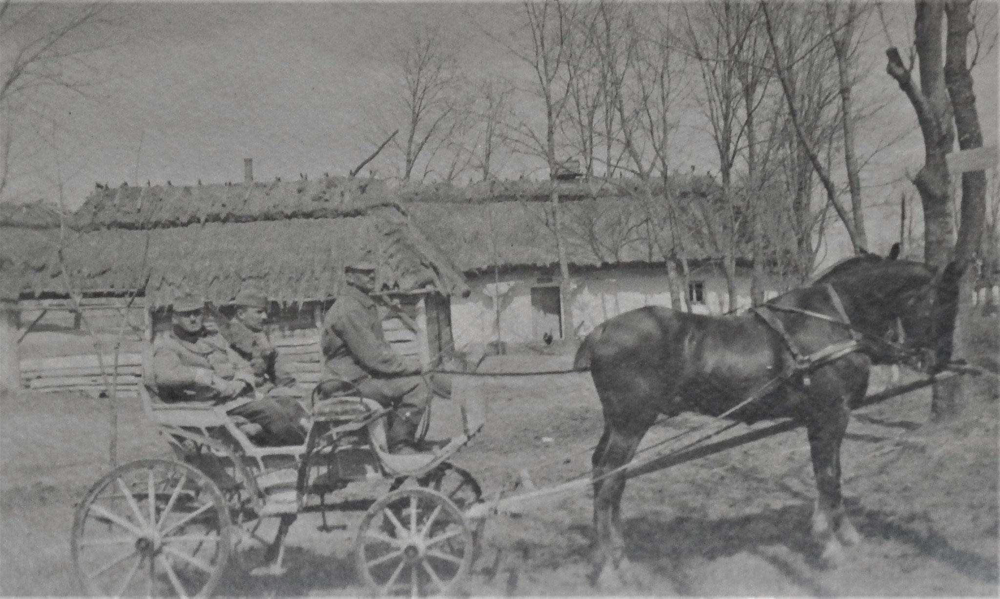 verm. 1917 Wysocko.