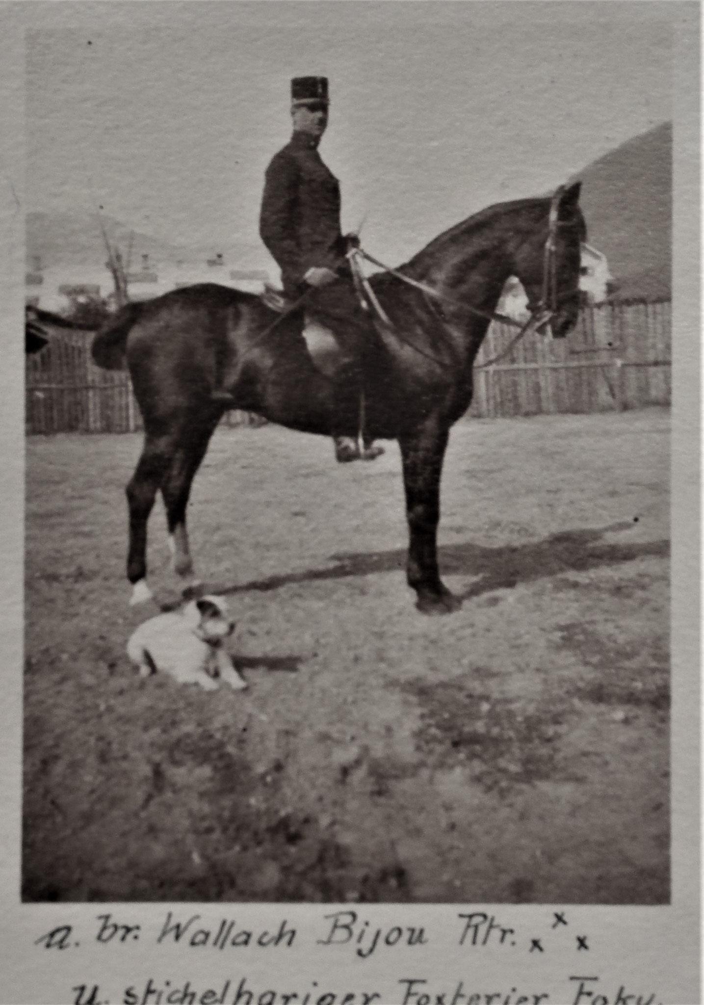 Kirchbach Max, 1912.
