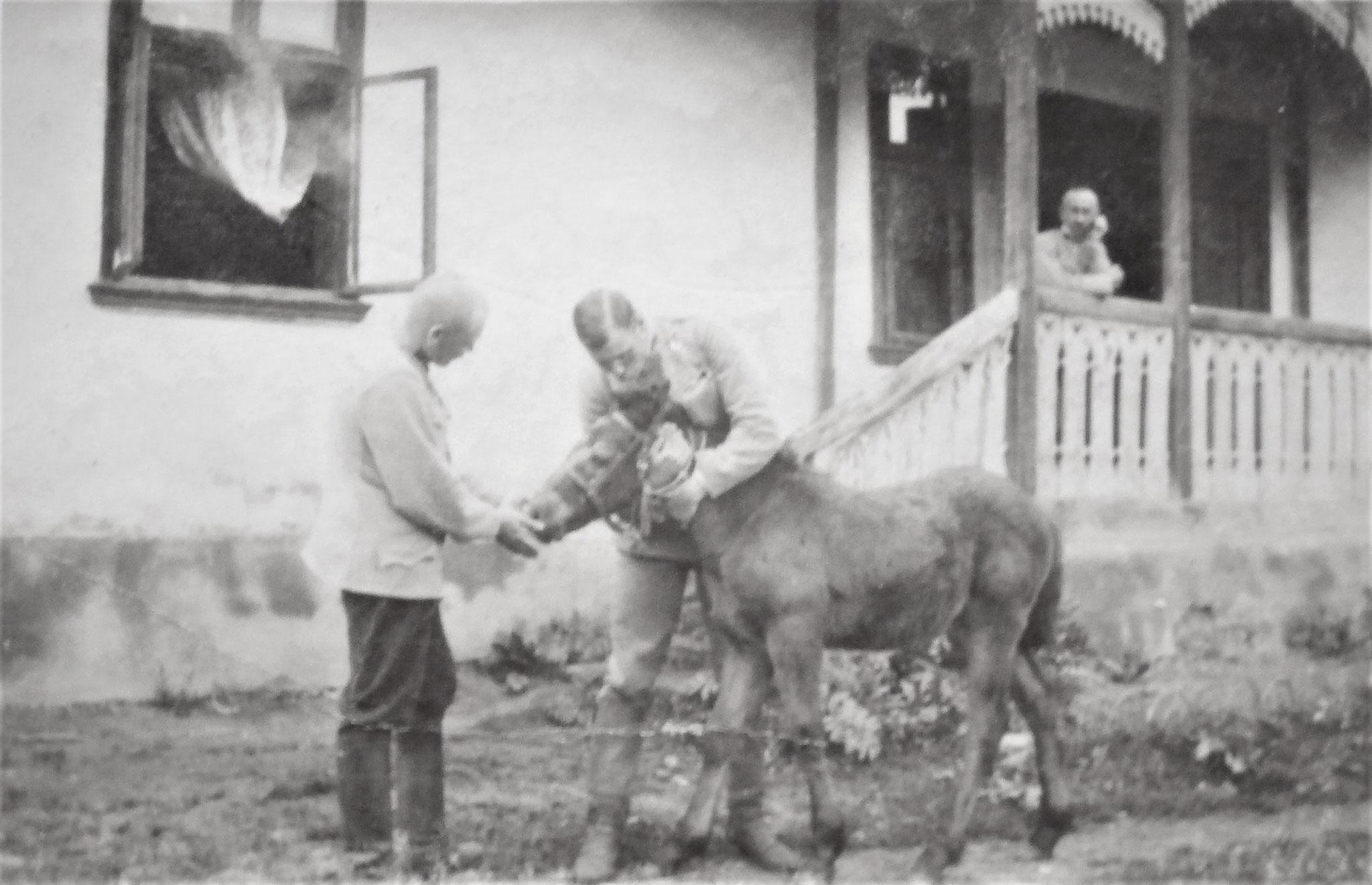 Unser Wohnhaus in Dwór Wolowa: vorne ich und Kirchbach mit sehr zutraulichen Fohlen, auf der Veranda Lang.