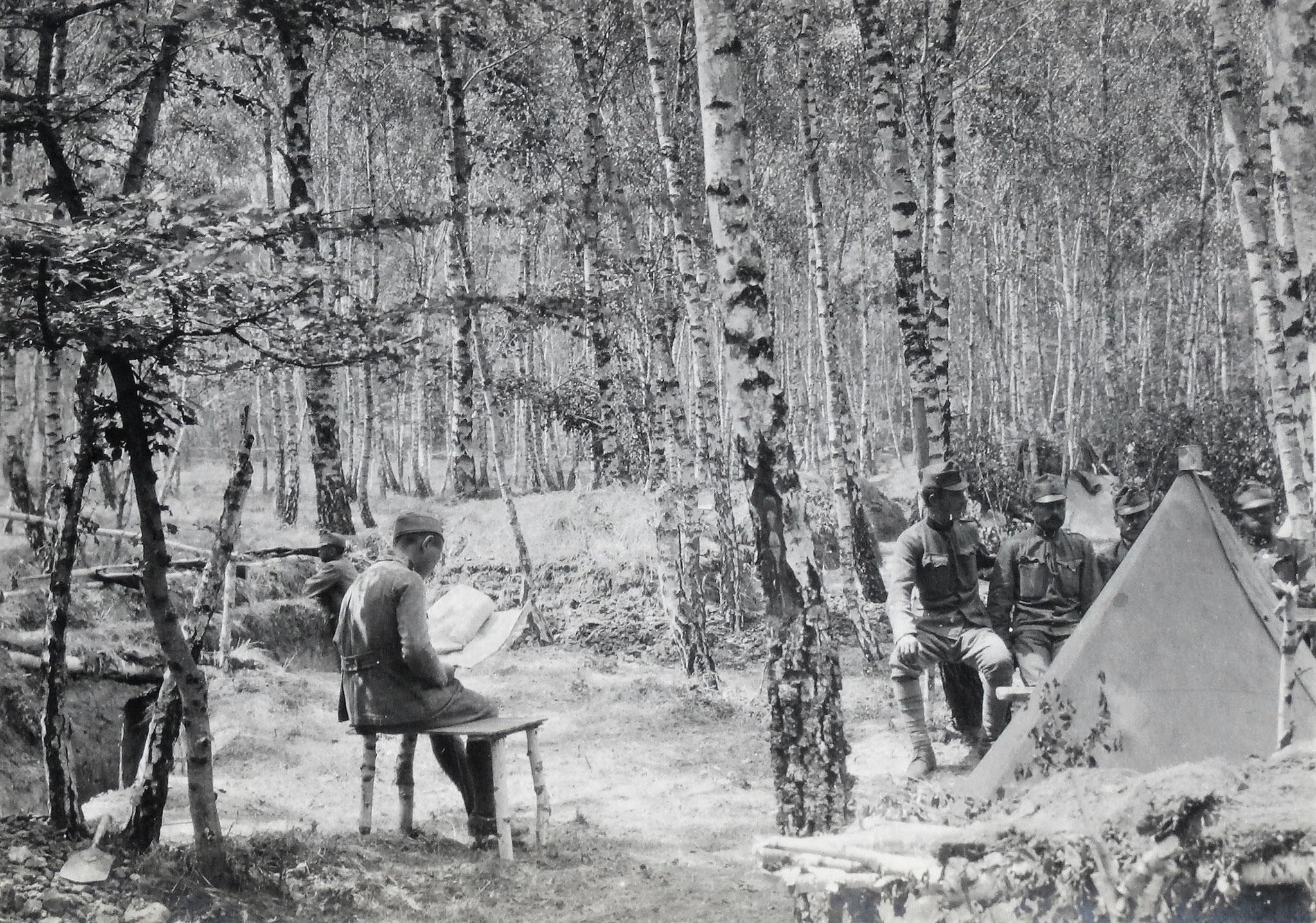 Friedliches Lagerleben im Walde südöstl. Puzniki nach der Ablöse.