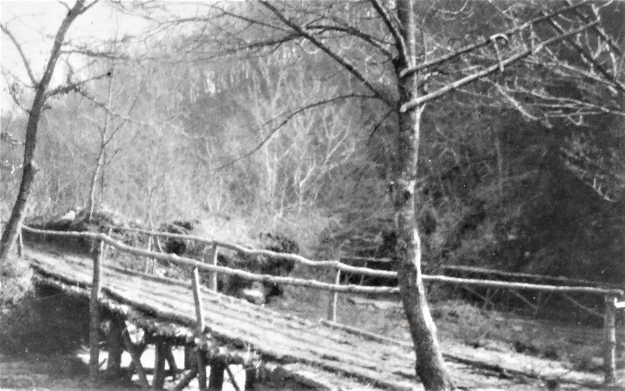 Eine der anderen vielen, sämtlich von unserem Pionierzug gebauten Brücken.