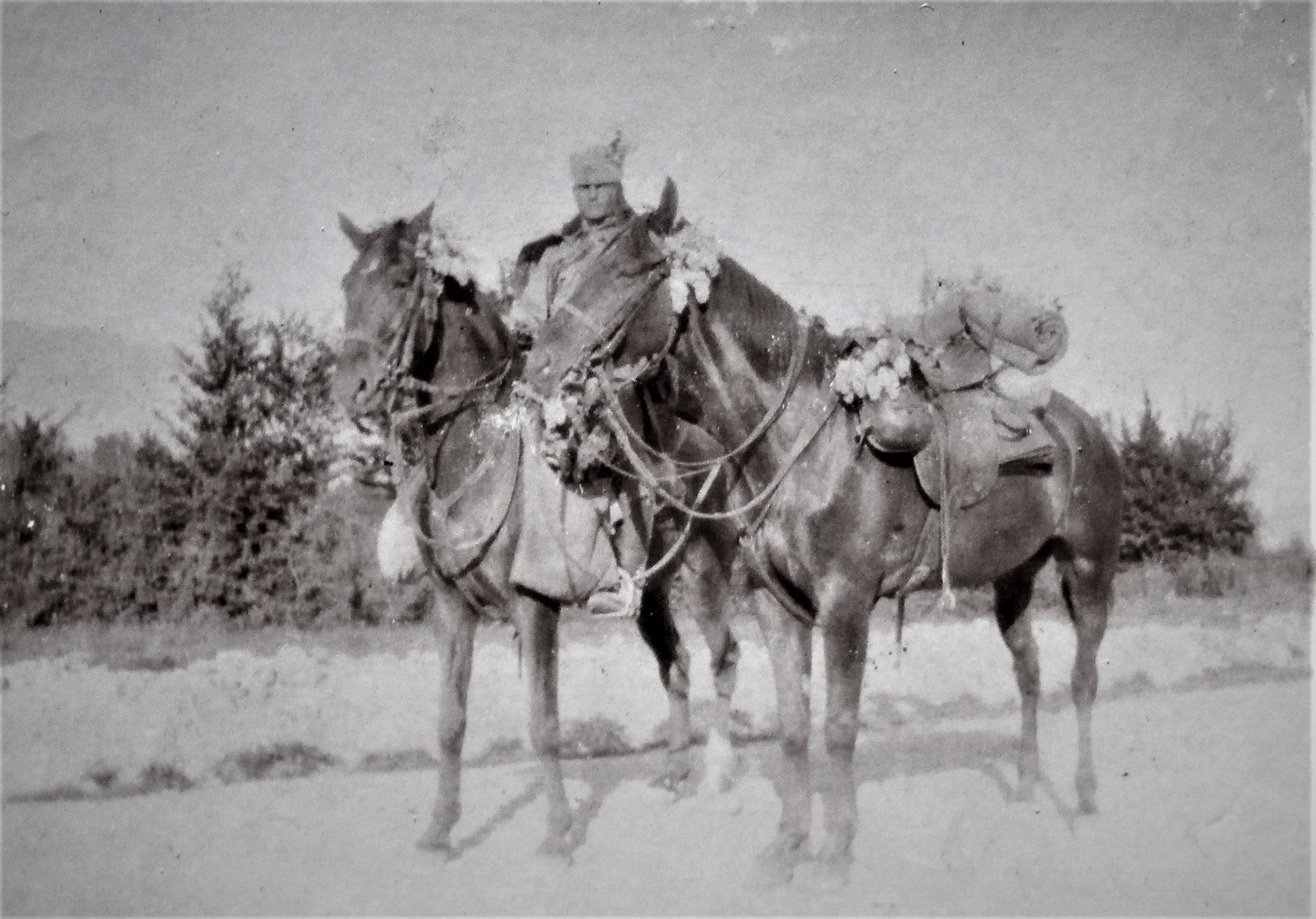 Nepos, das Offz-Chargenpferd Sulkowskis, gehalten von dessen Pferdewärter Drag. Tassolt.