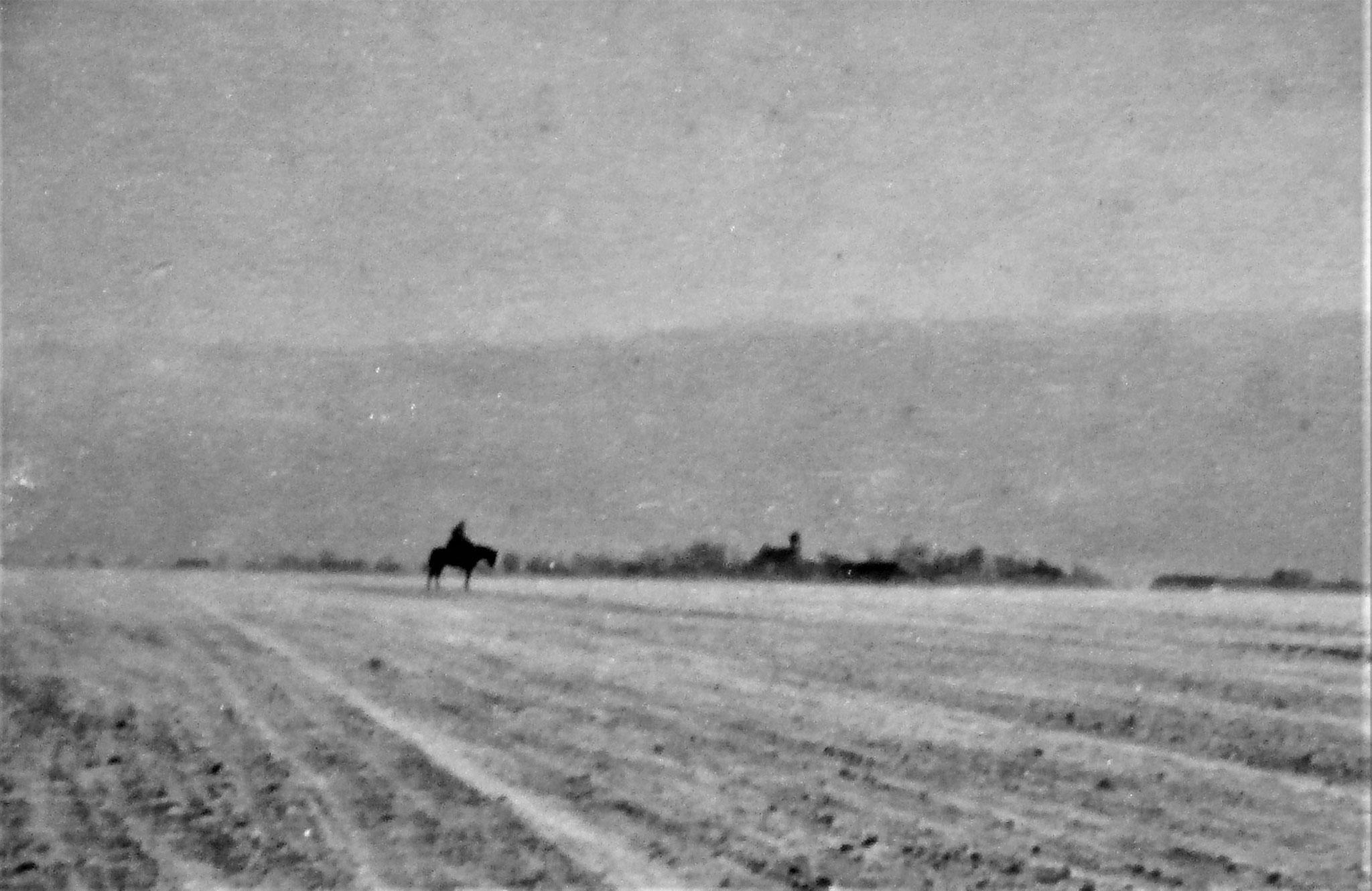 Blick von Czernelica nach Ost,- Hintergrund das Dorf Dabki.