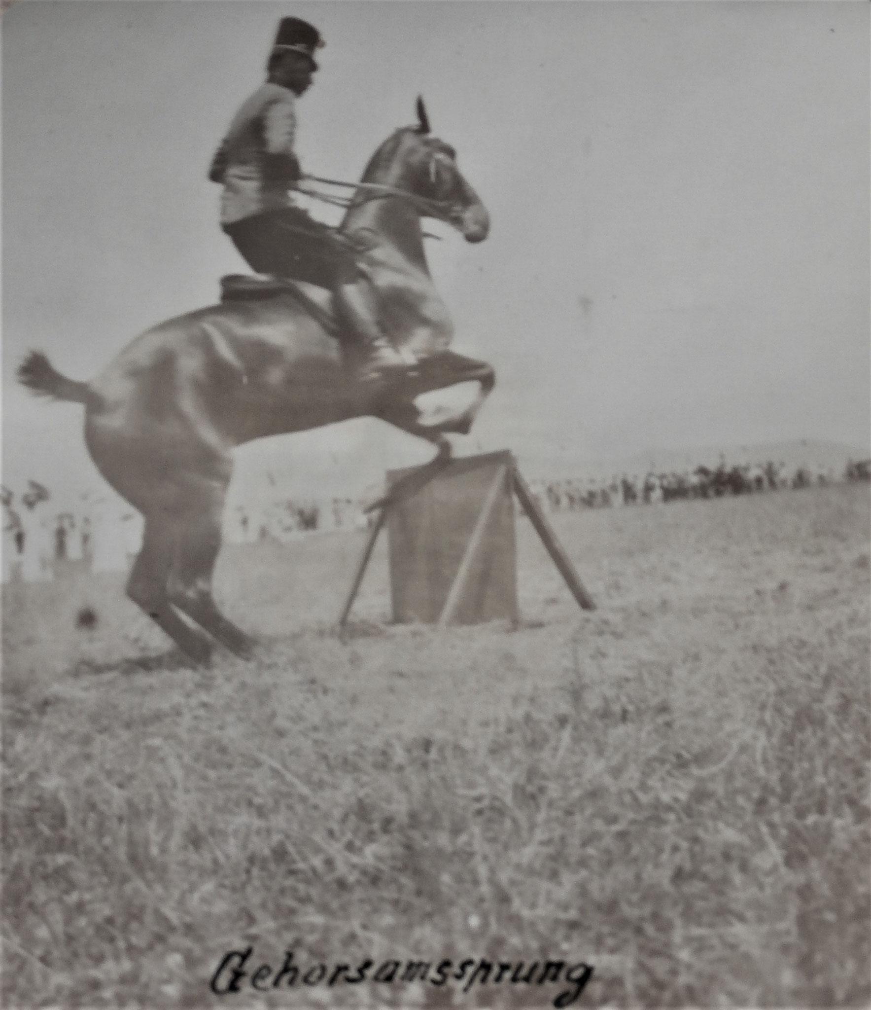 Oberleutnant Baron Pielsticker