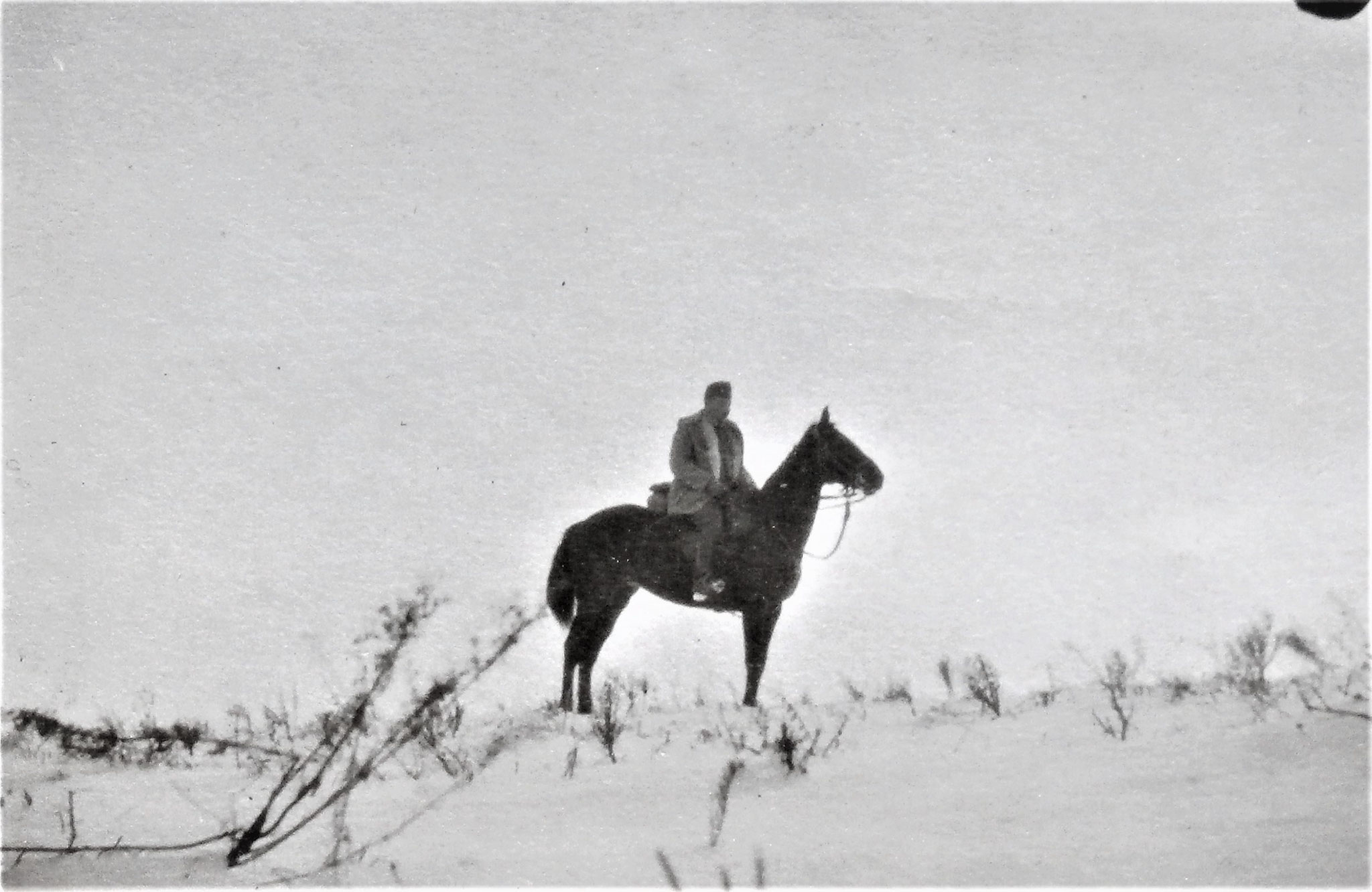 Reiter im Schnee. Lt. i. d. Res. Robert Schreiner.