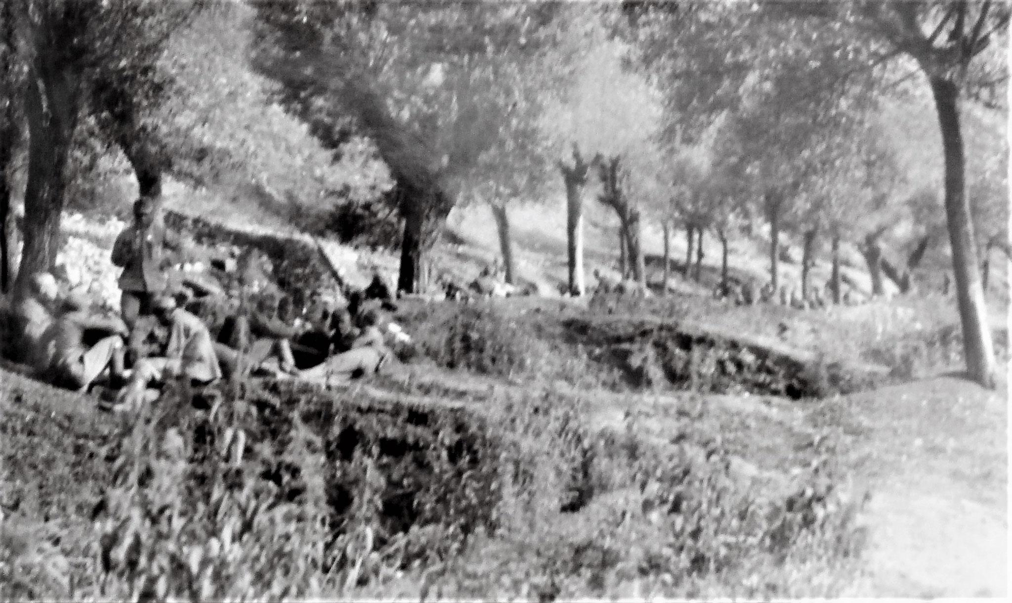 Als Reserve der 14. Kavalleriebrigade.