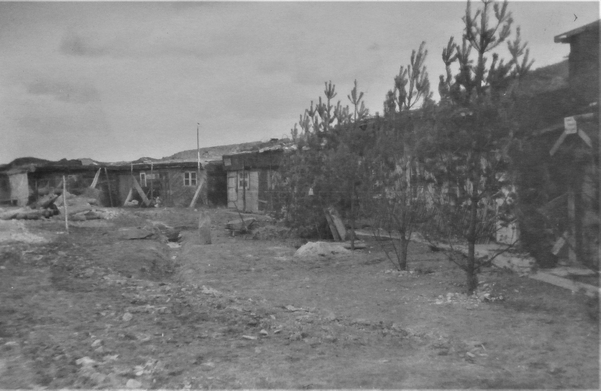 RgtKdo D 5 Dezember 1917.
