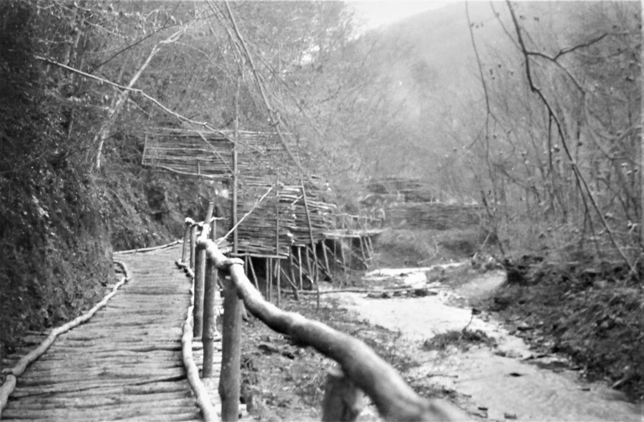 Gedeckter Weg am Osthang der Legschlucht, wo sie von feindlicher Artillerie bestrichen war.