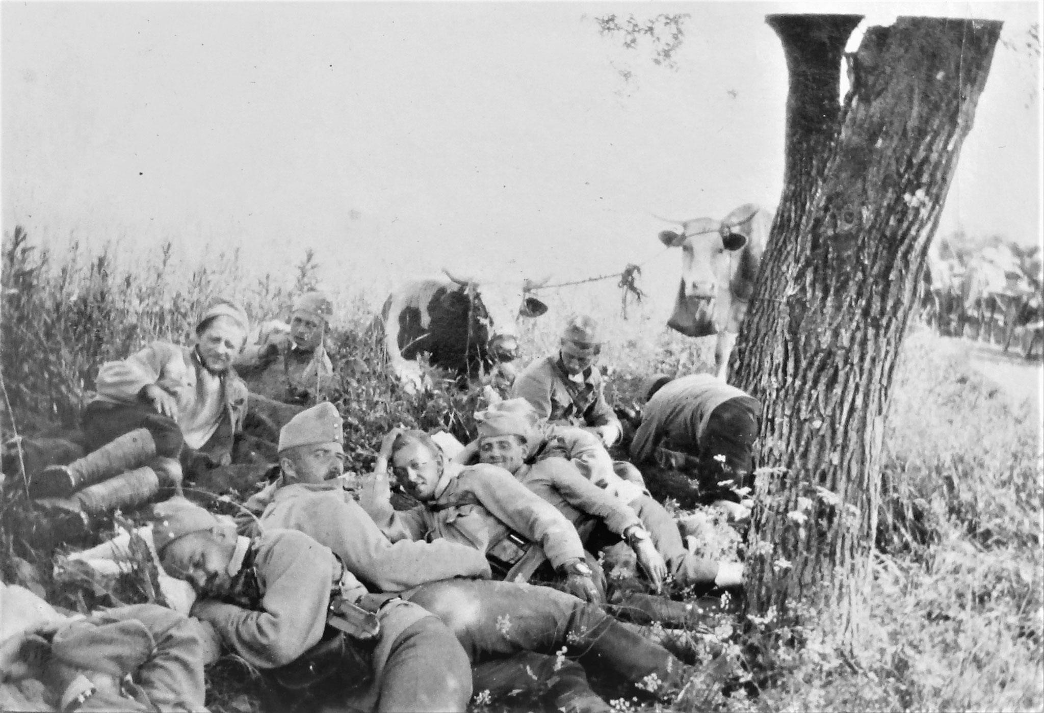 In Reserve nördl. von Horodenka am 11. / 6.: OffzStellv. Franz Werther (1. Esk.) u. Mannschaft.