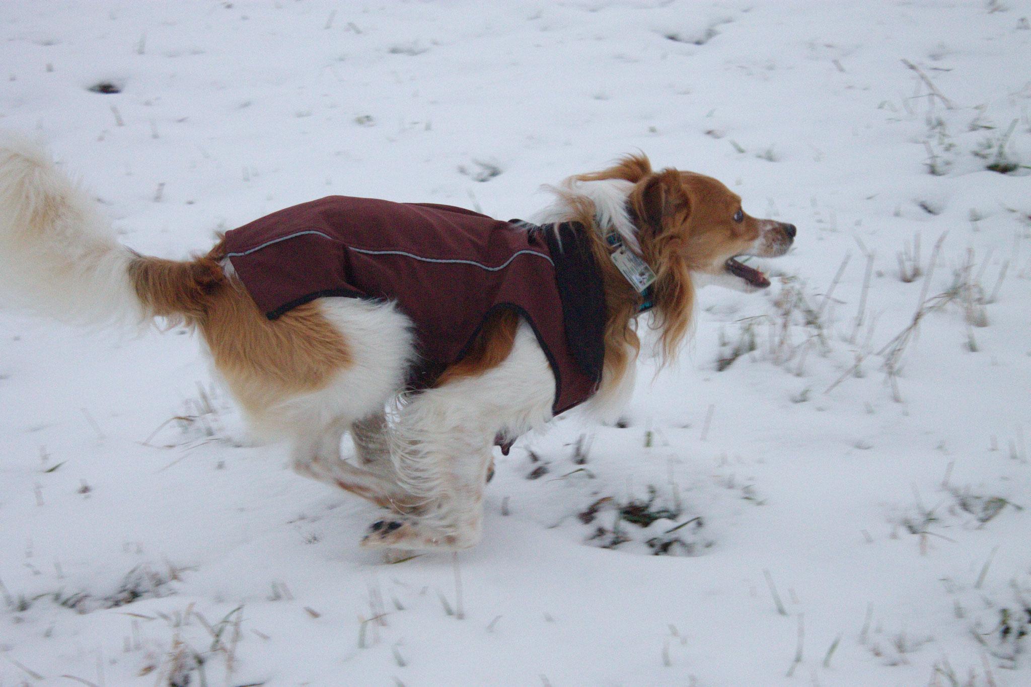 Snowfun...