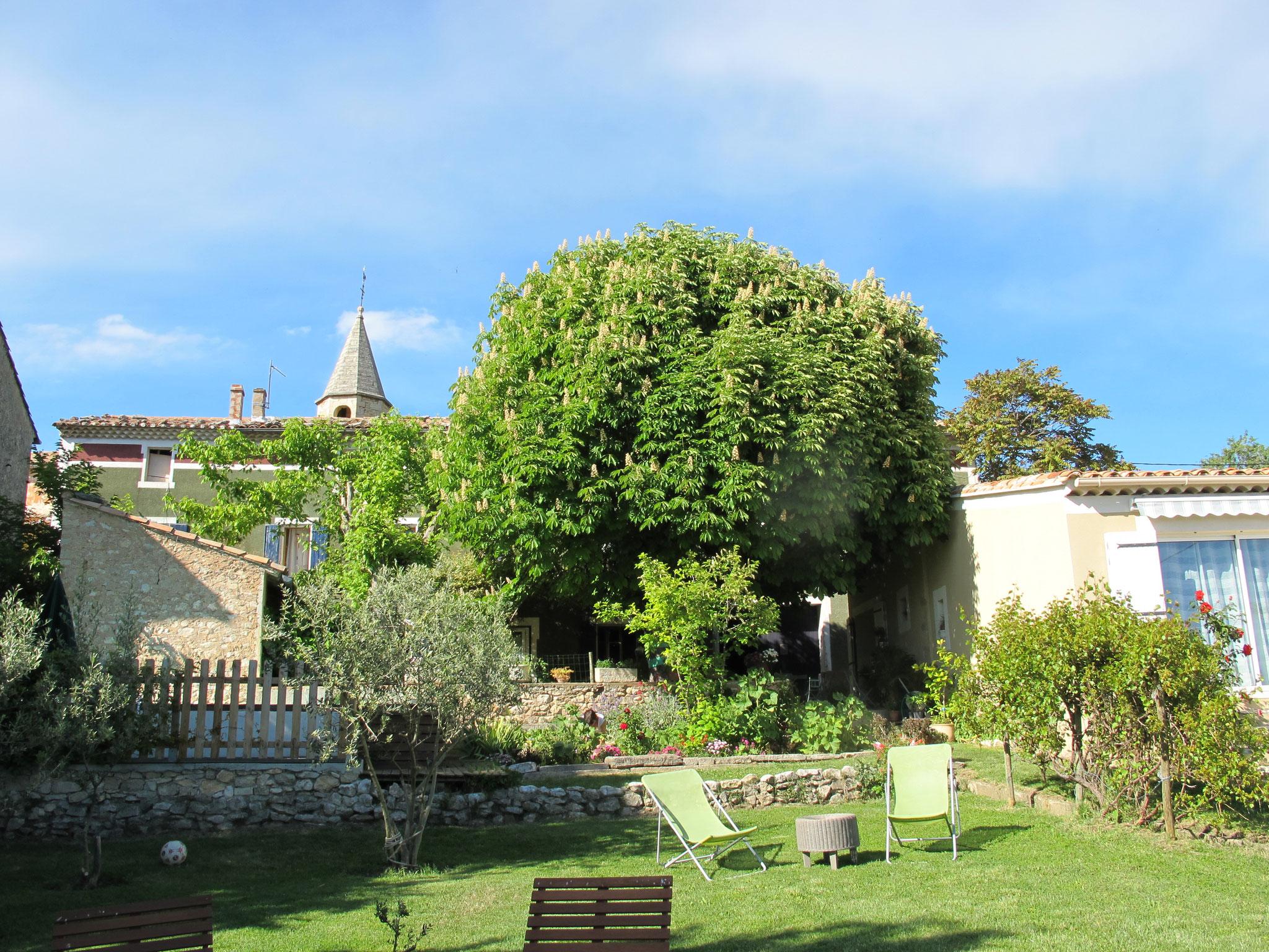loucardaline-bedoin-ventoux-chambre d hotes-vaucluse-vacances-famille-été-vacances