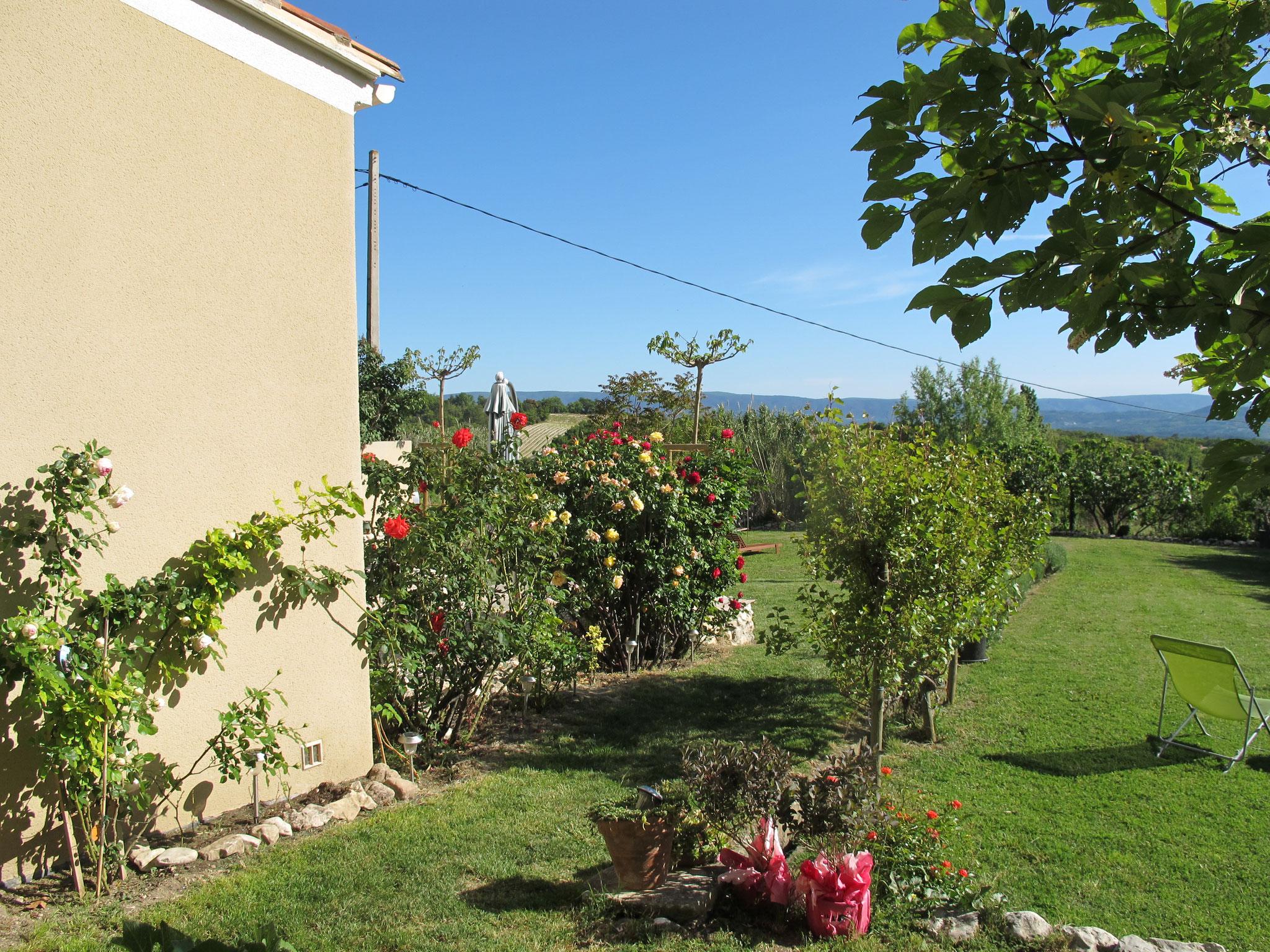 loucardaline-bedoin-ventoux-hébergement-chambre d hotes-vaucluse-vacances-été-fleur