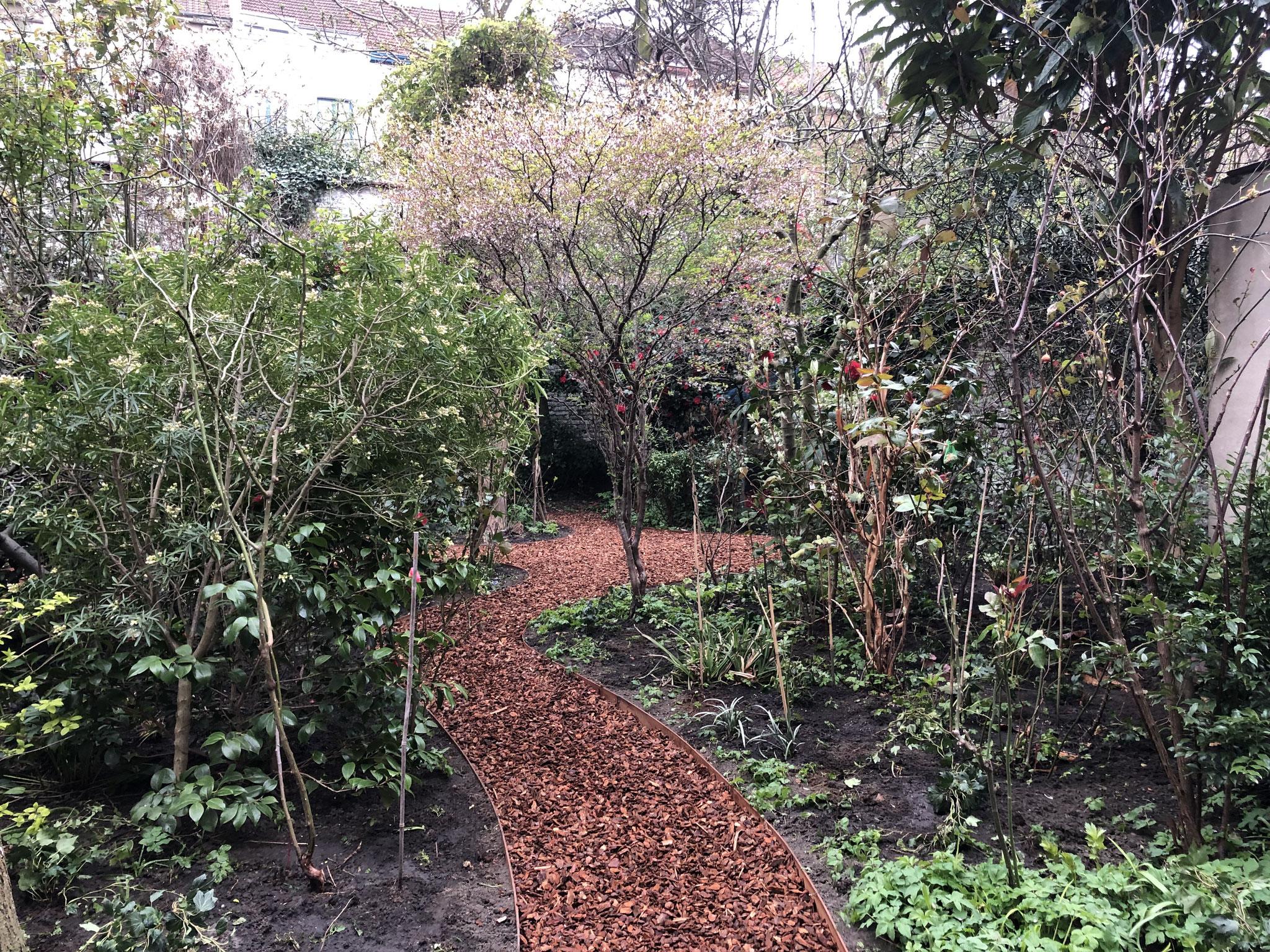 Jardin de ville 200m2 - Ambiance sous-bois - Cheminement vers les terrasses du fond du jardin. Aménagement Jaridn Bruxelles