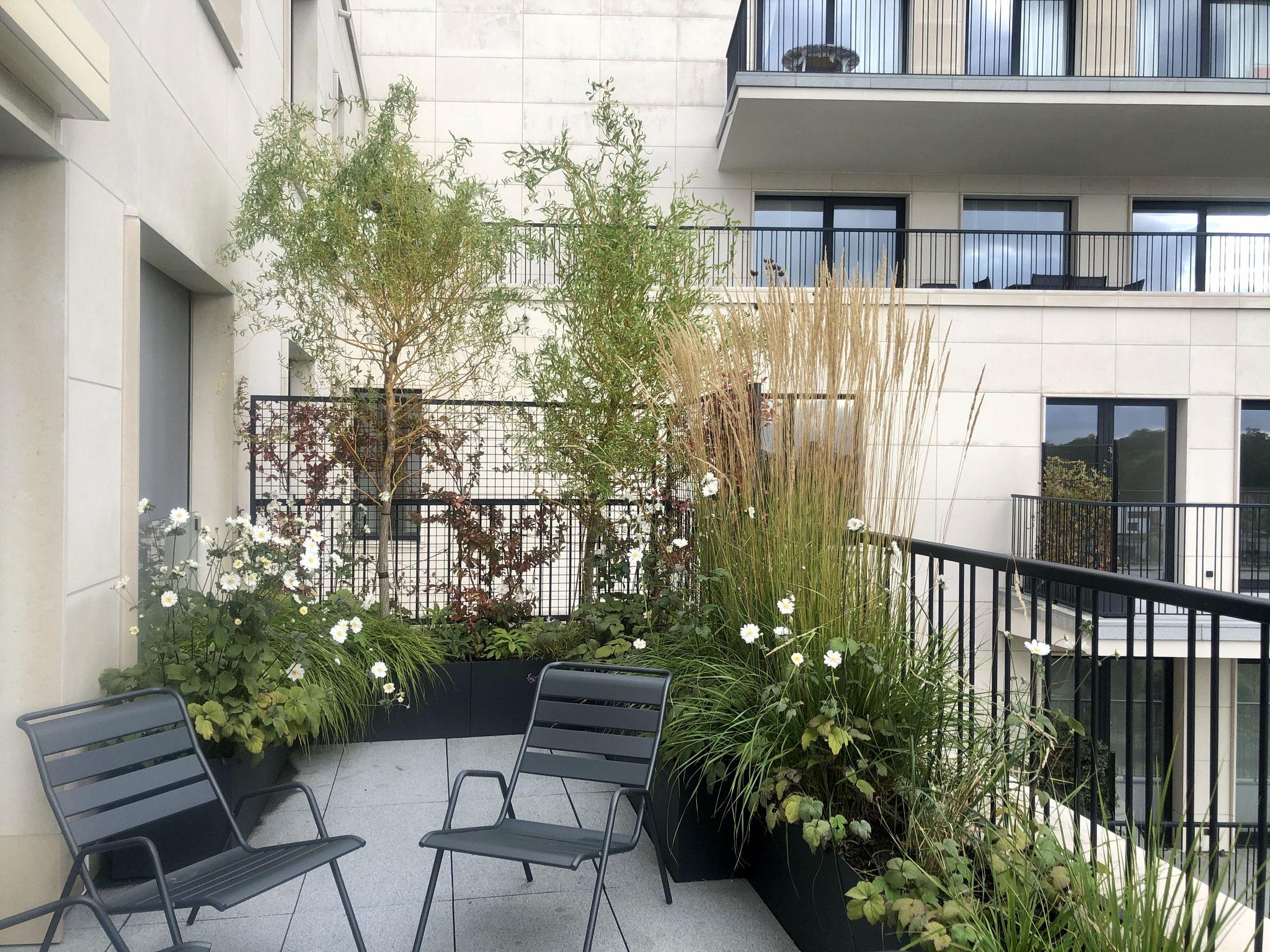 Terrasse de 25m2 - Jardin naturalliste - Partie Prairie / Bord d'eau. Aménagement jardin Bruxelles
