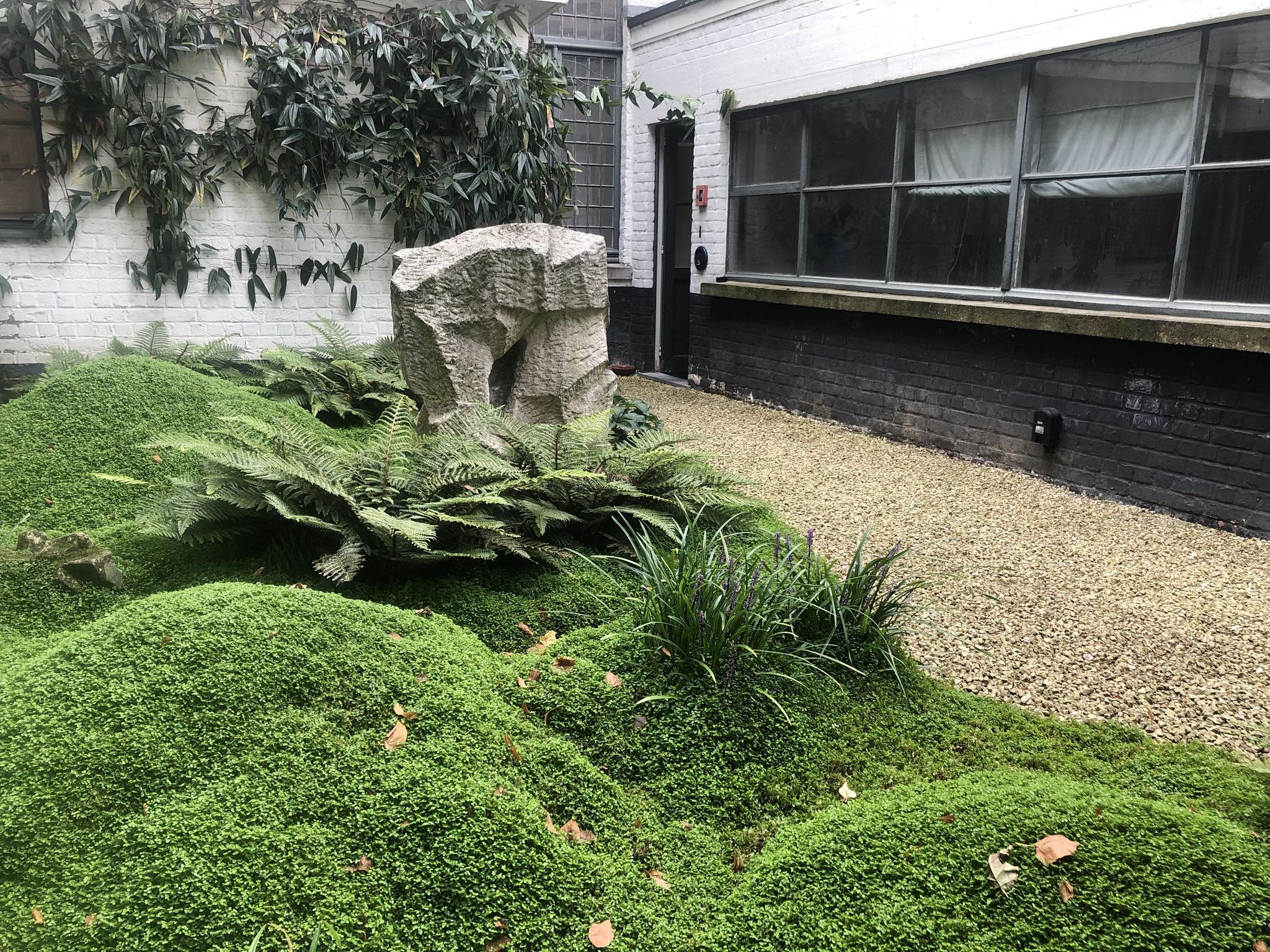 Cour de 60m2 - Style japonais - Année 3. Amenagement jardin Bruxelles