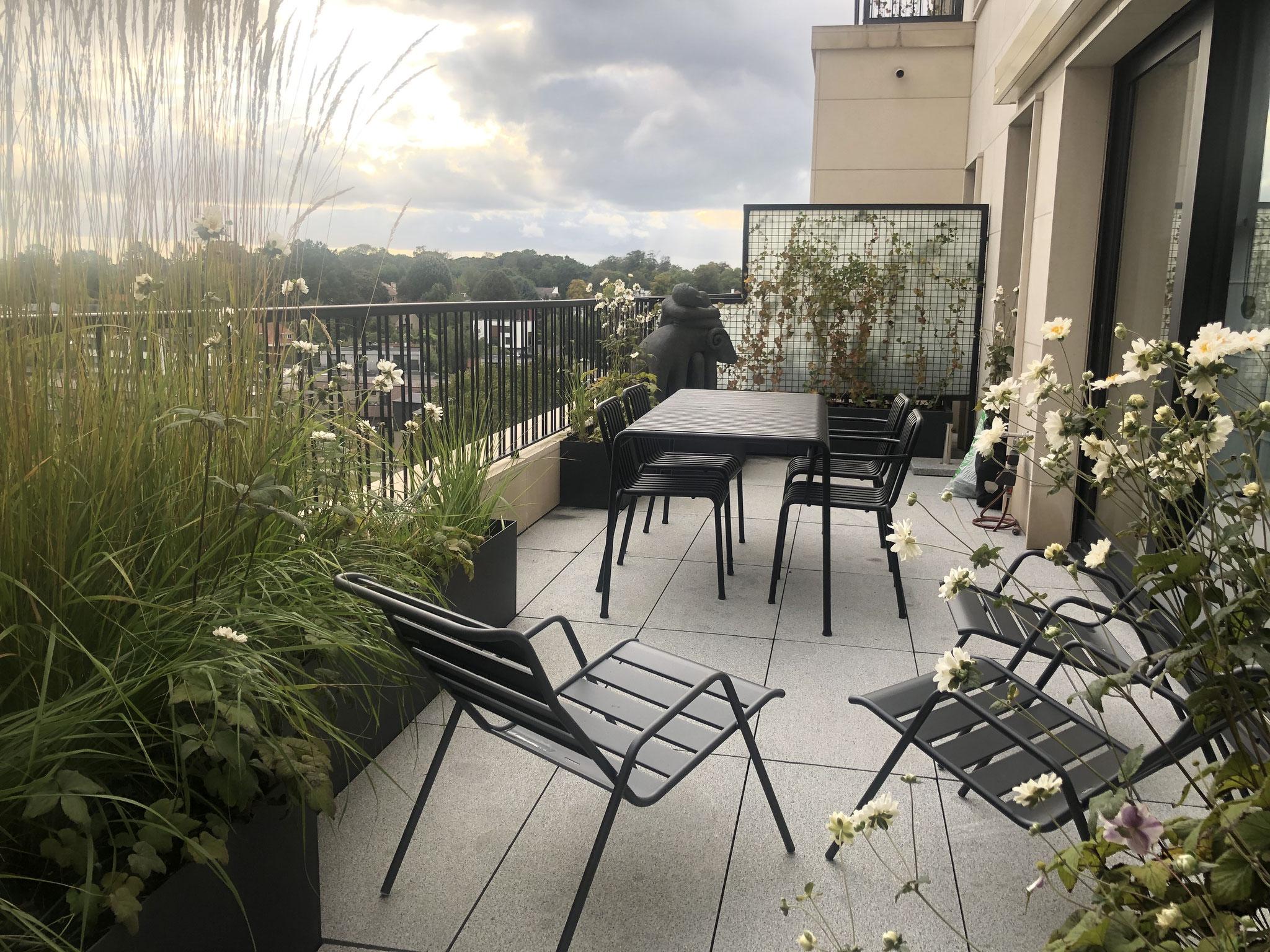 Terrasse de 25m2 - Jardin naturalliste - Partie ouverte sur la vue. Aménagement jardin Bruxelles