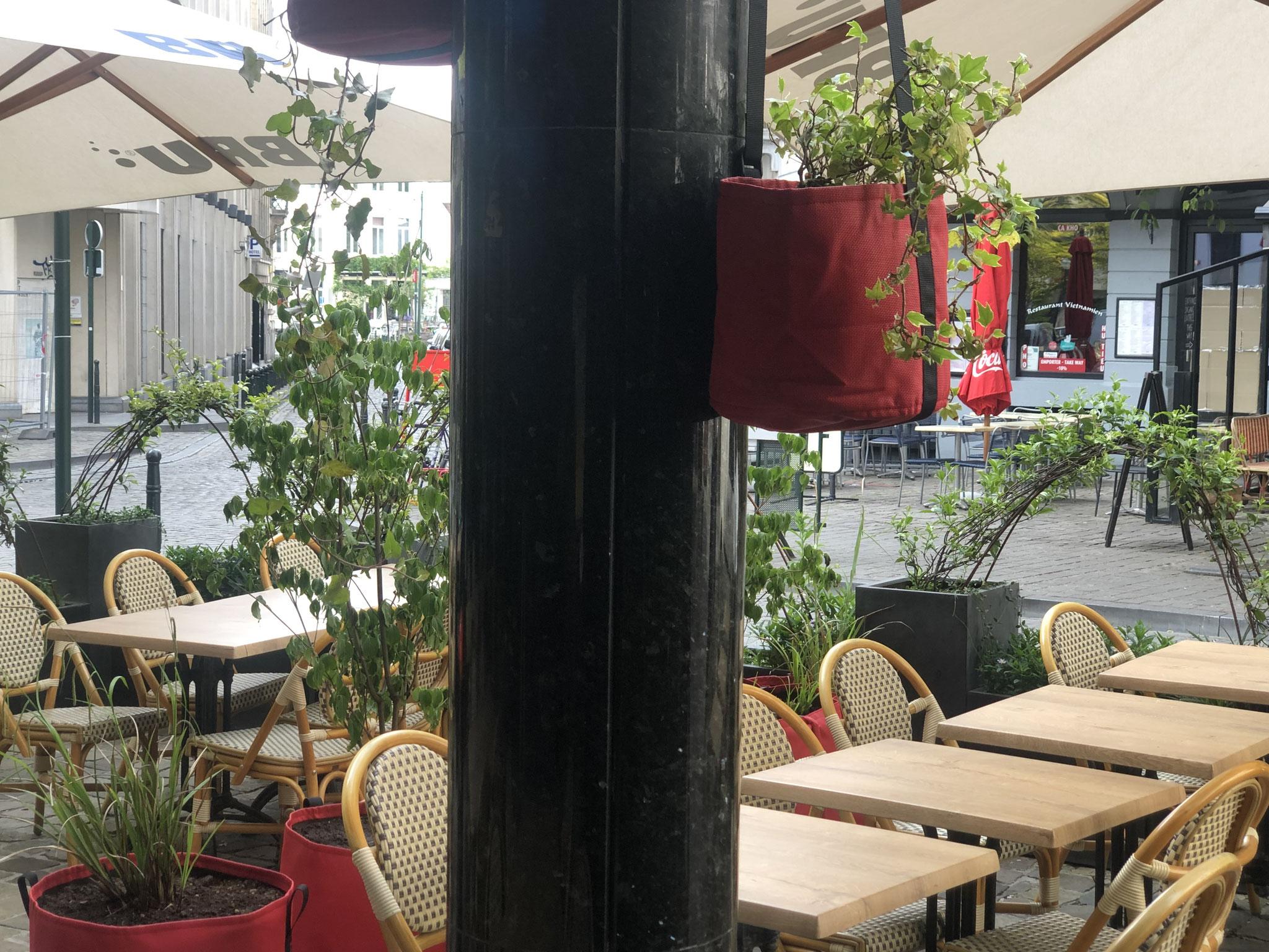 """Terrasse de 50m2 - Ambiance """"Sous-Bois"""" - Détails sur les bacs suspendus. Aménagement jardin Bruxelles"""
