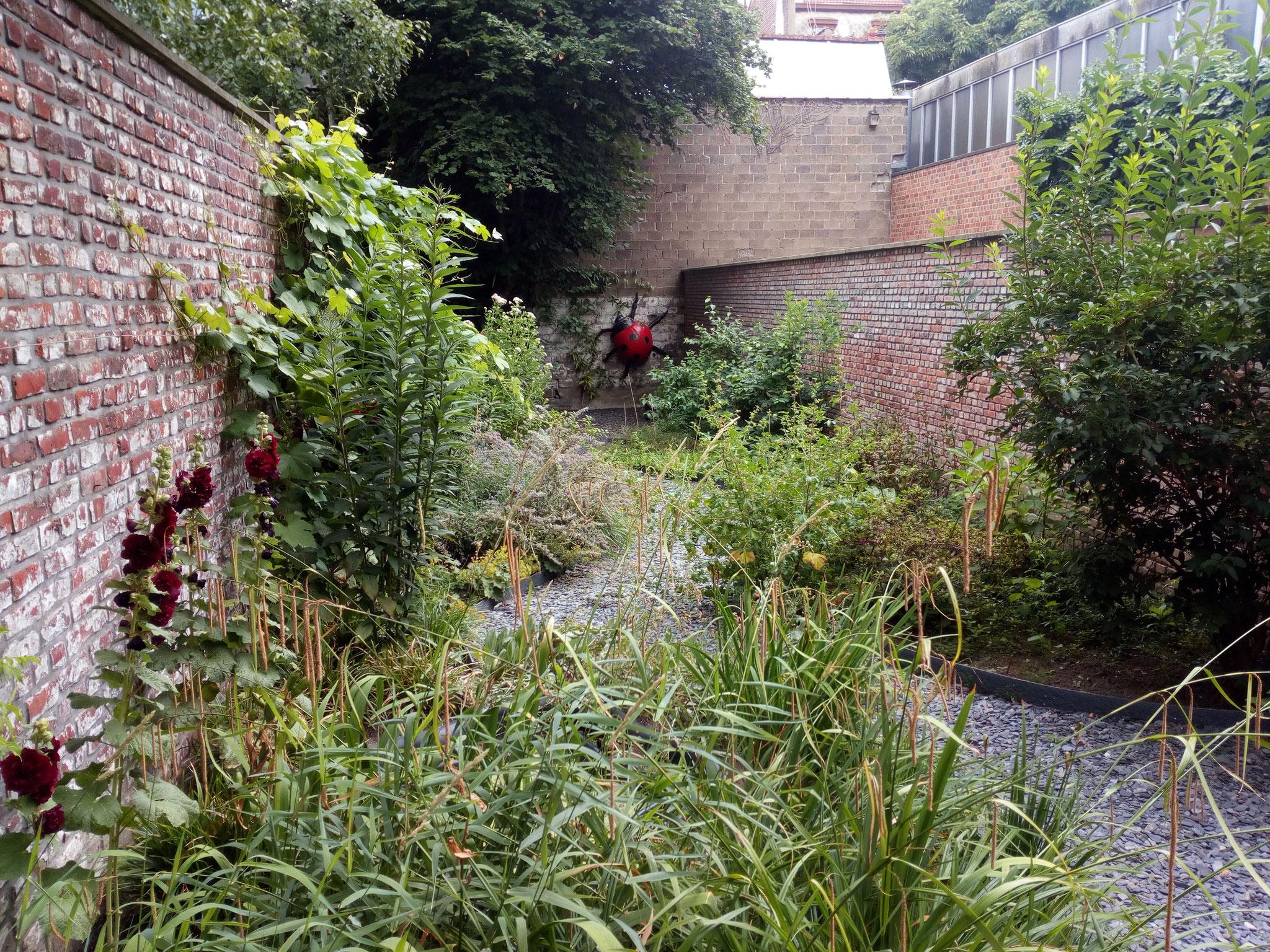Jardin de ville 120m2 - Après 1 an. Amenagement jardin Bruxelles