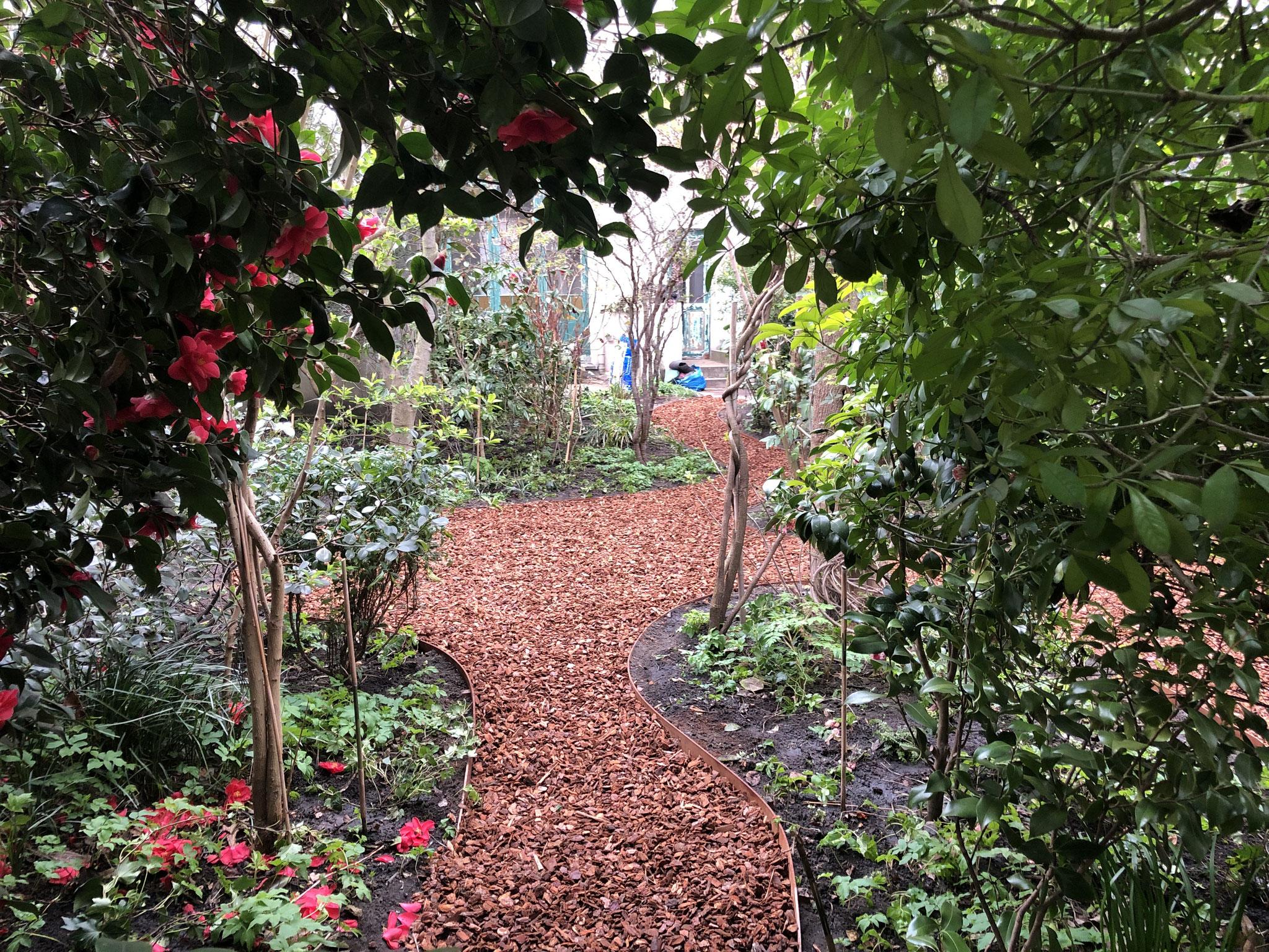 Jardin de ville 200m2 - Ambiance sous-bois - Vue sur le jardin et la maison depuis le fond. Aménagement Jaridn Bruxelles