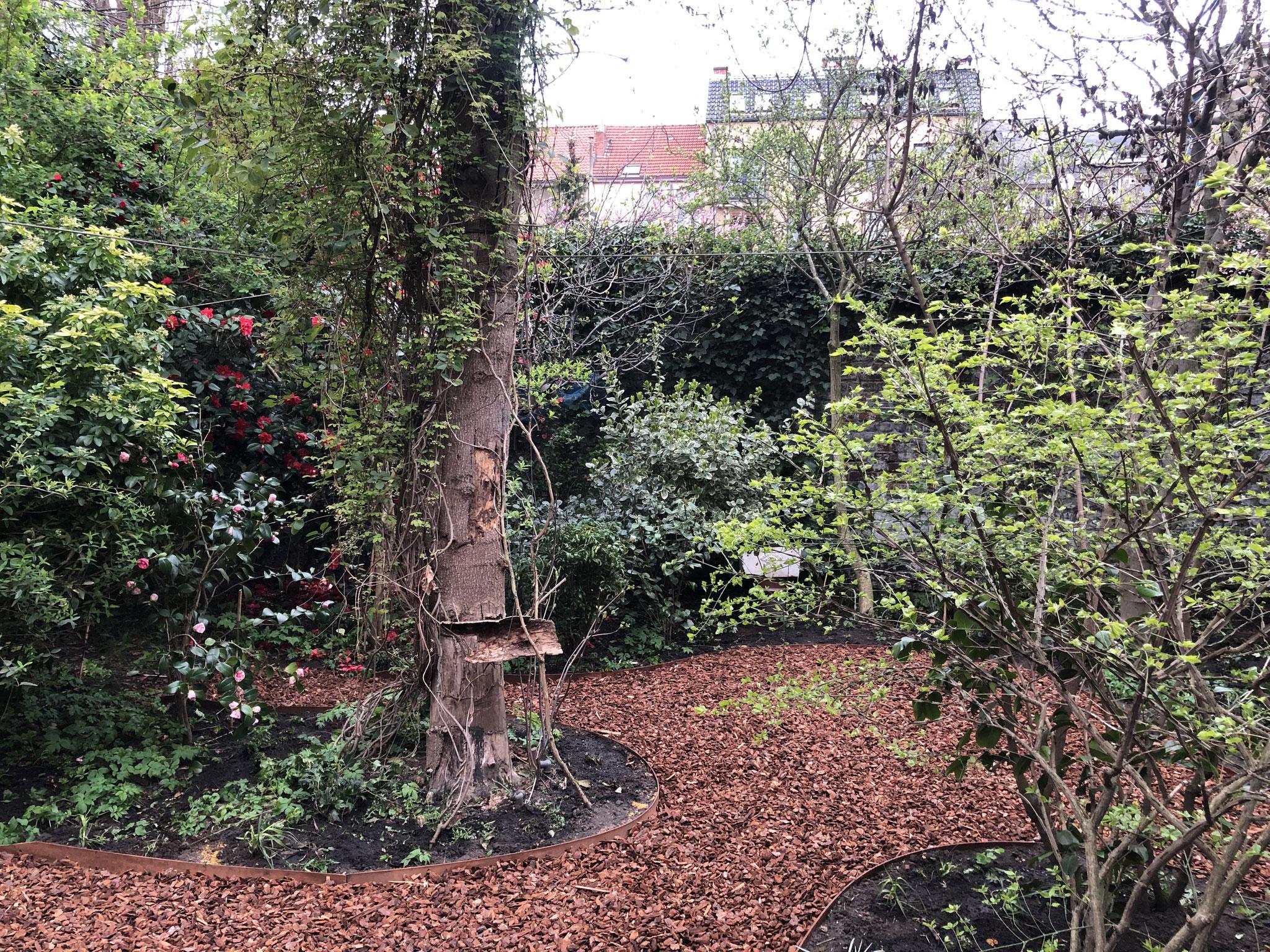 Jardin de ville 200m2 - Ambiance sous-bois - Terrasses du fond du jardin. Aménagement Jaridn Bruxelles