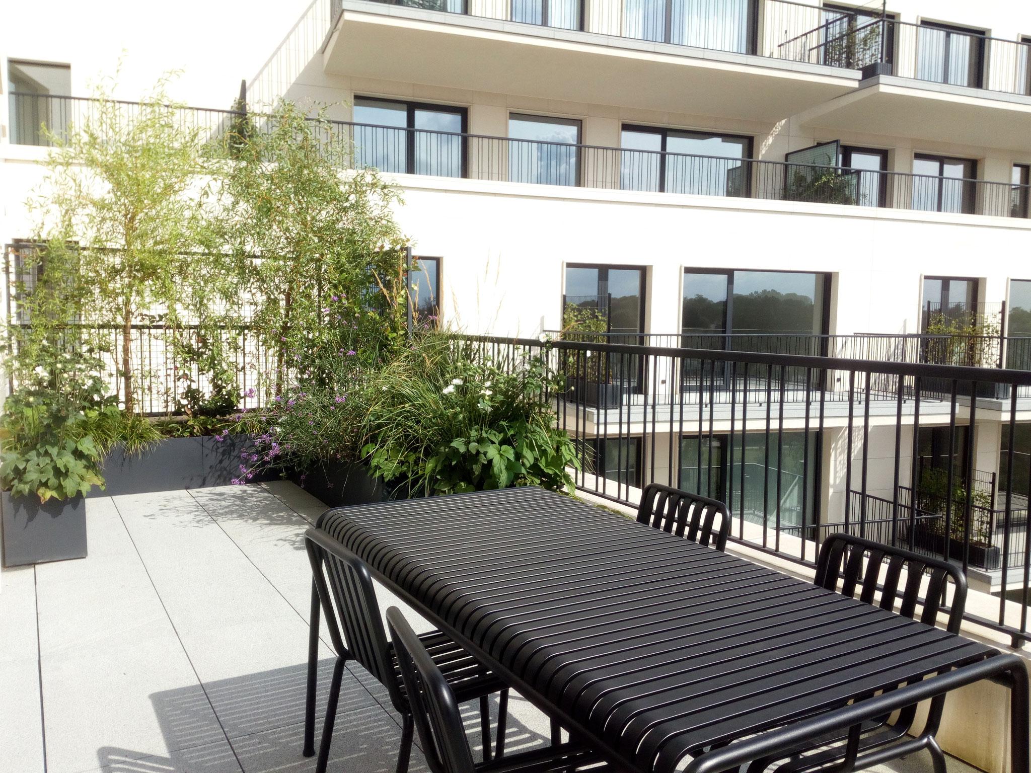 Terrasse de 25m2 - Jardin naturalliste - Le voisinage. Aménagement jardin Bruxelles