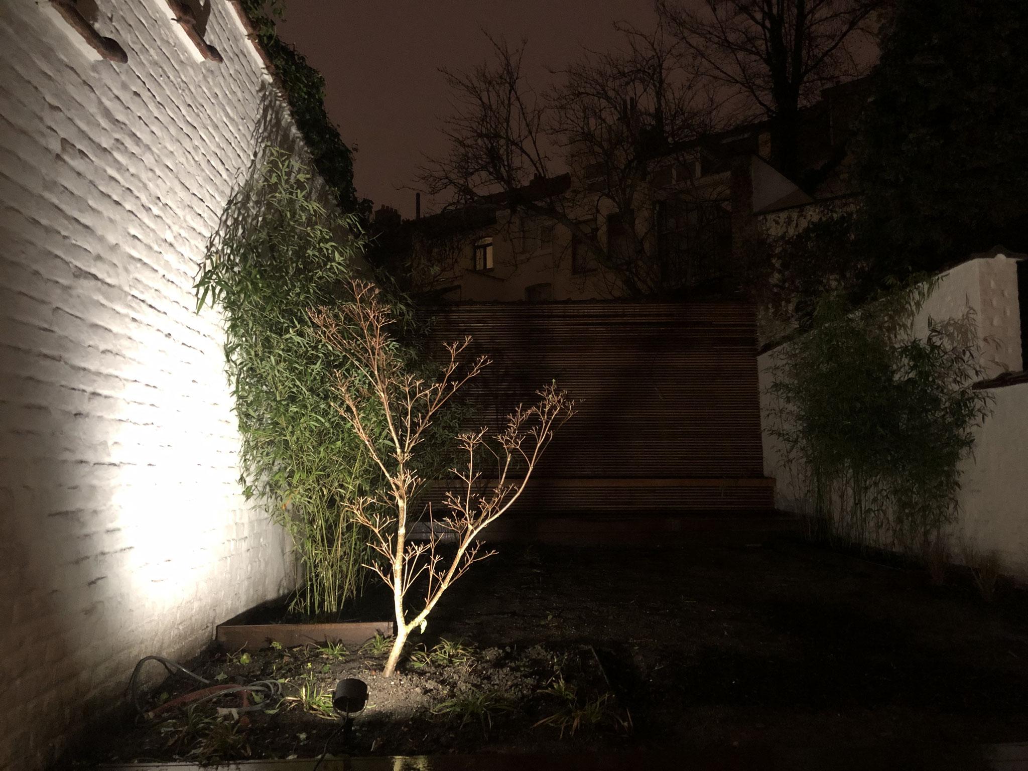 Jardin de 100m2 - Style contemporain - Détail / Eclairage platebande. Aménagement jardin Bruxelles