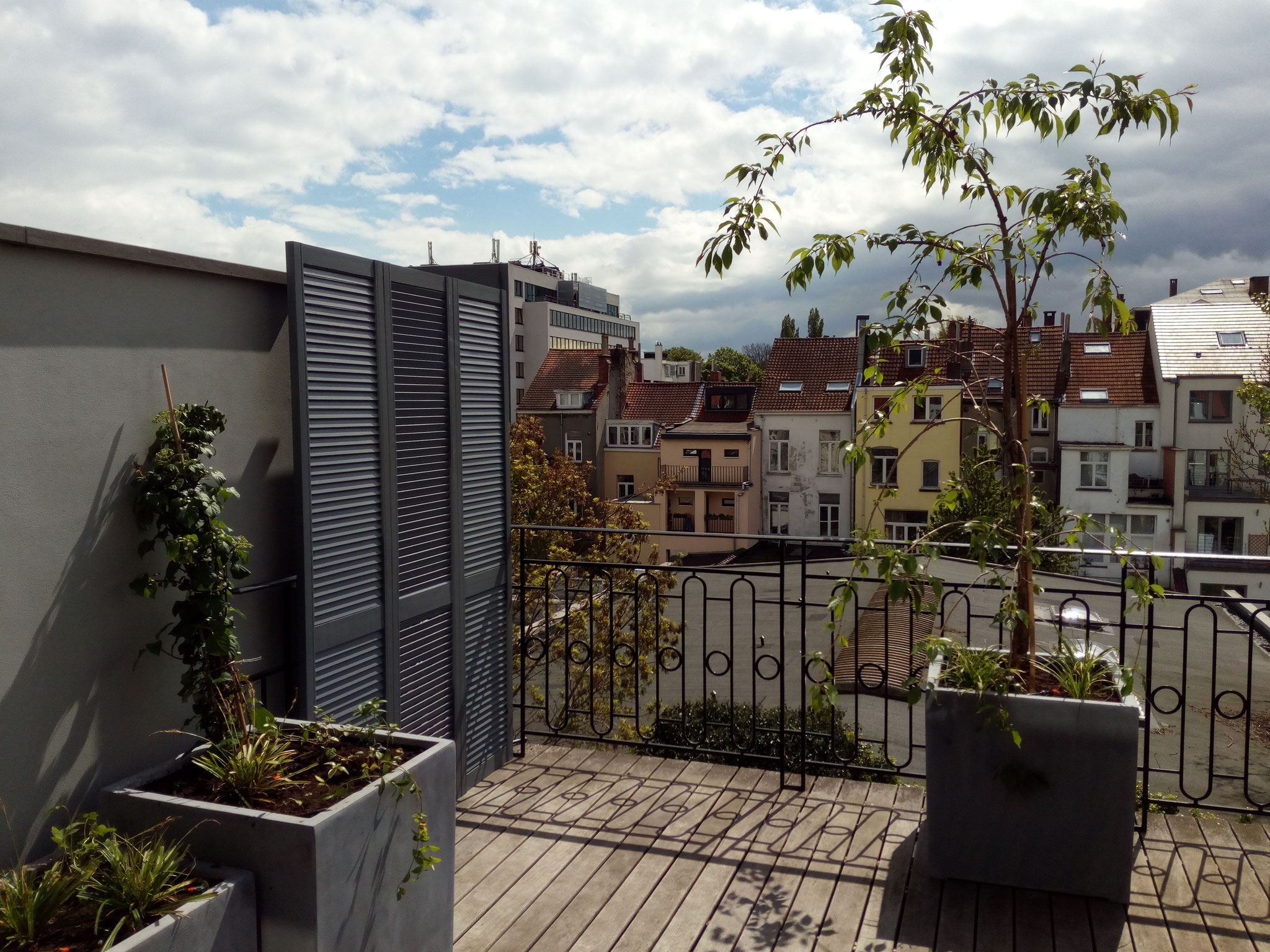 Terrasse 30m2 - Ambiance verger fleuri - Partie gauche & face - Amenagement jardin Bruxelles