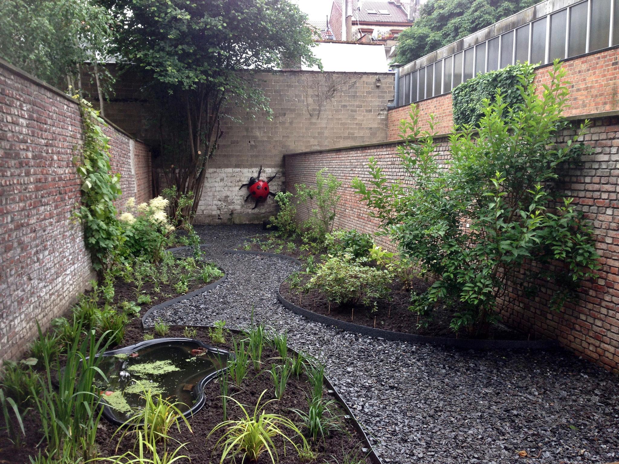 Jardin de ville 120m2 - Après plantations - Vue depuis la terrasse principale. Amenagement jardin Bruxelles