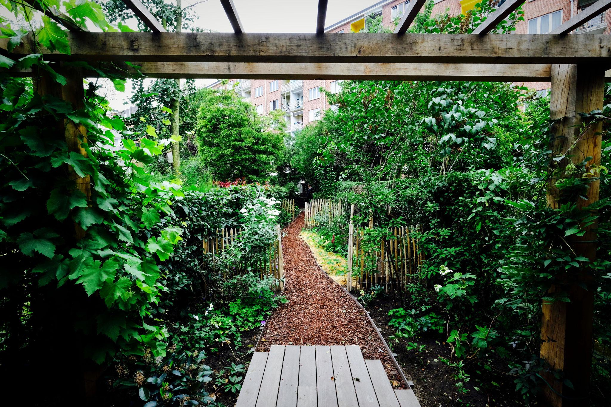 Jardin de ville 120m2 - Agroforesterie urbaine - Entrée dans le jardin. Aménagement jardin Bruxelles.