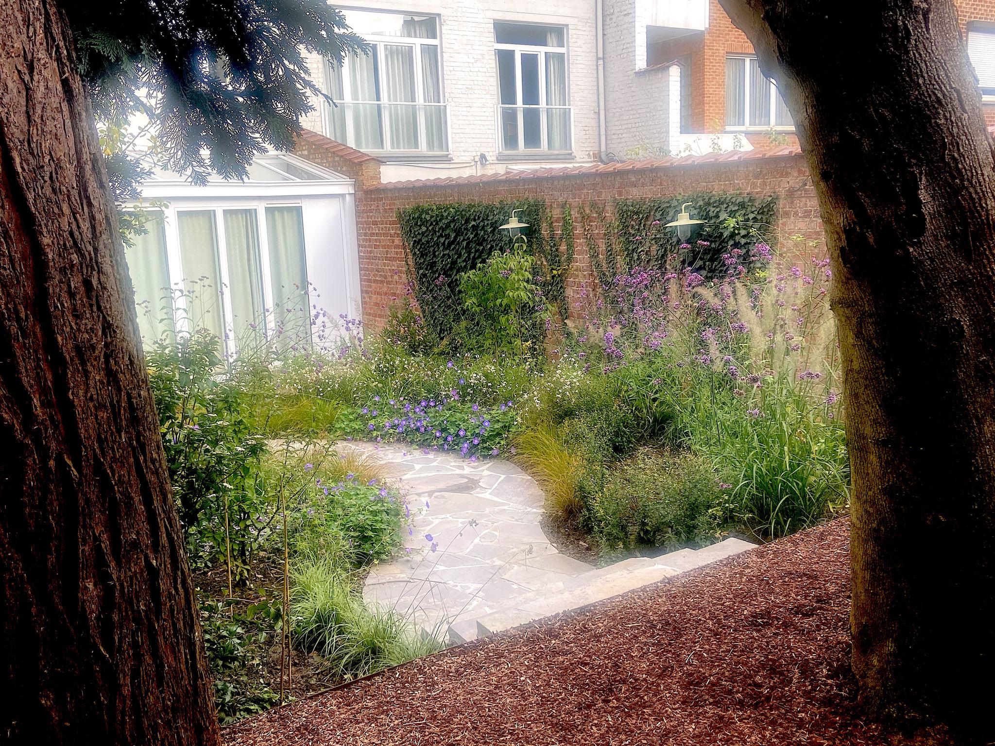 Jardin de ville 50m2 - Jardin naturaliste - Chemin en cassons de grès menant tà la terrasse avant. Aménagement Jardin Bruxelles