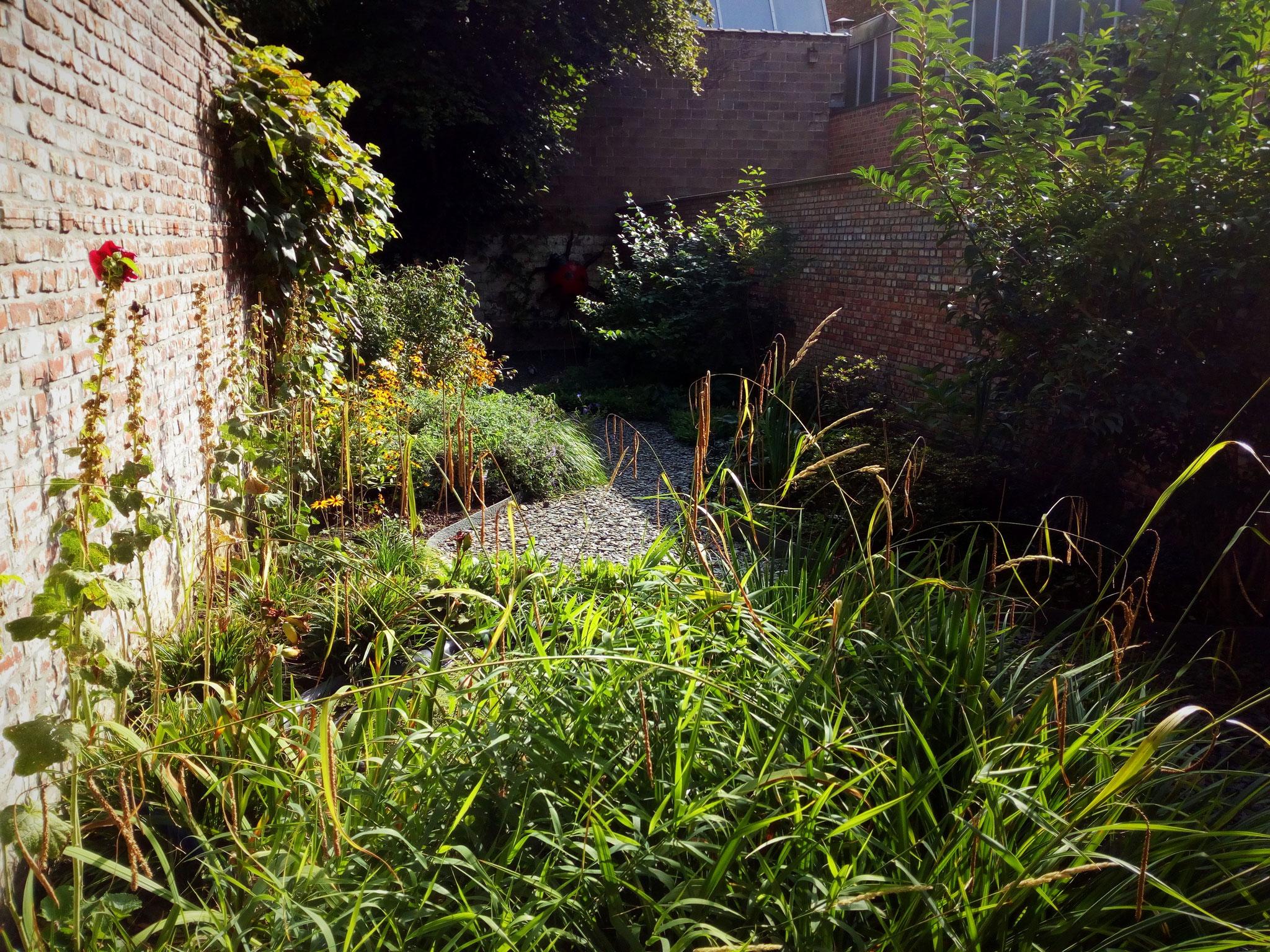 Jardin de ville 120m2 - 2 ans après- Vue depuis la terrasse existante. Amenagement jardin Bruxelles