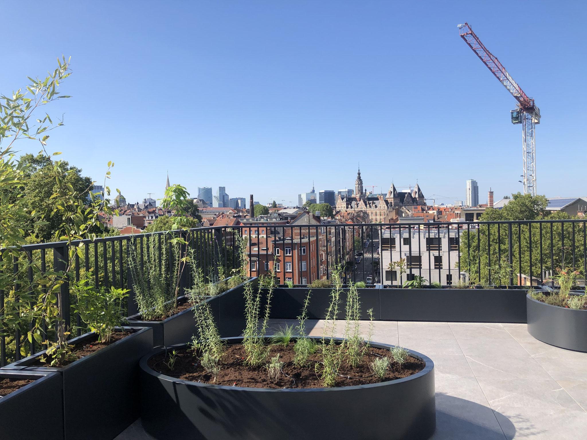 Rooftop Terrasse 40m2 - Aménagement contemporain - Vue sur la ville. Aménagement Jardin Bruxelles